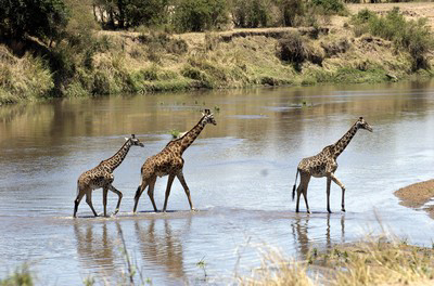 Tanzania-18.jpg