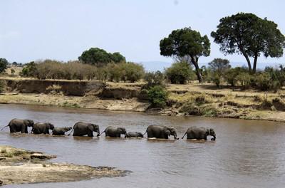Tanzania-23.jpg