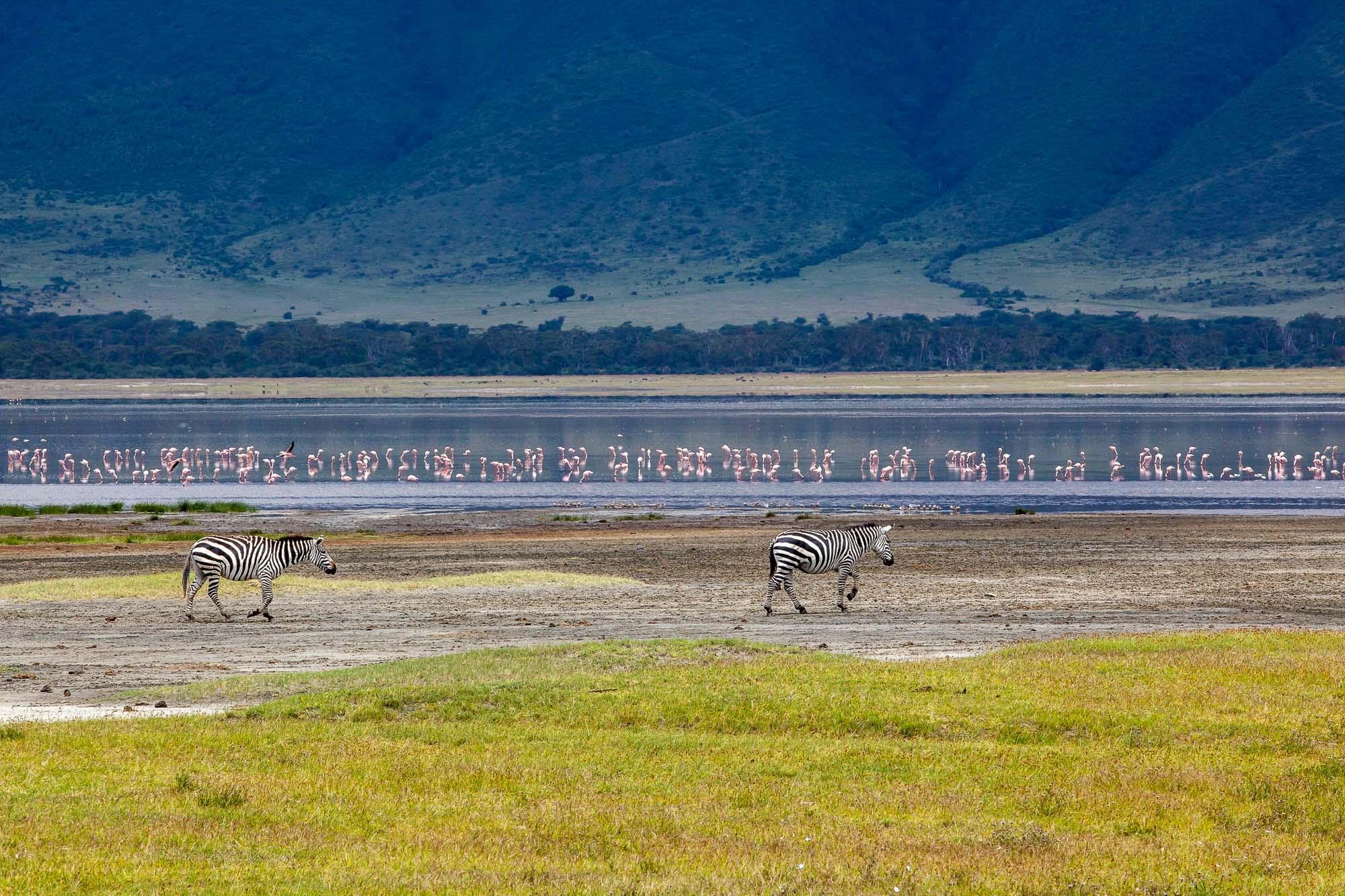 Tanzania-28.jpg