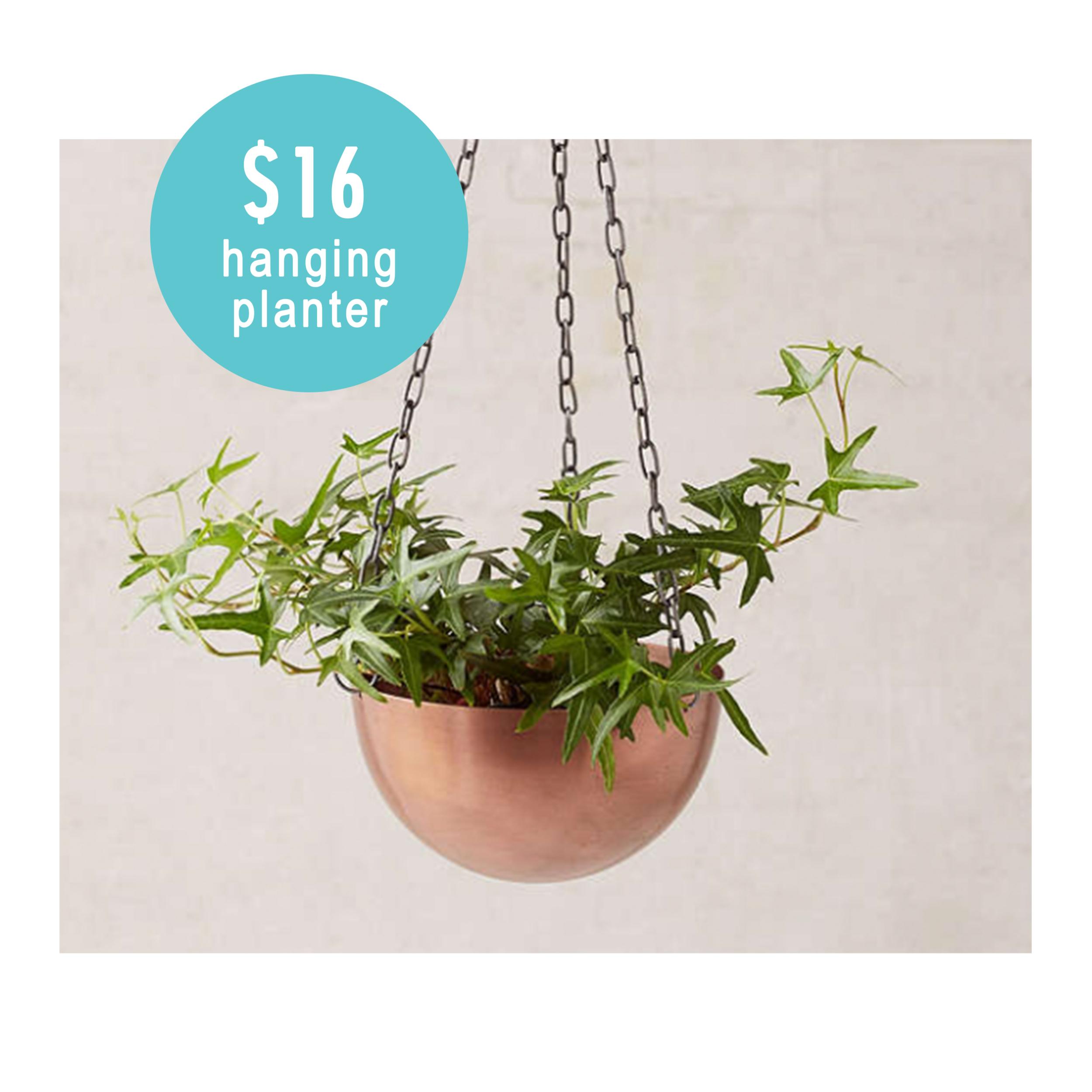 jaja_planter.png