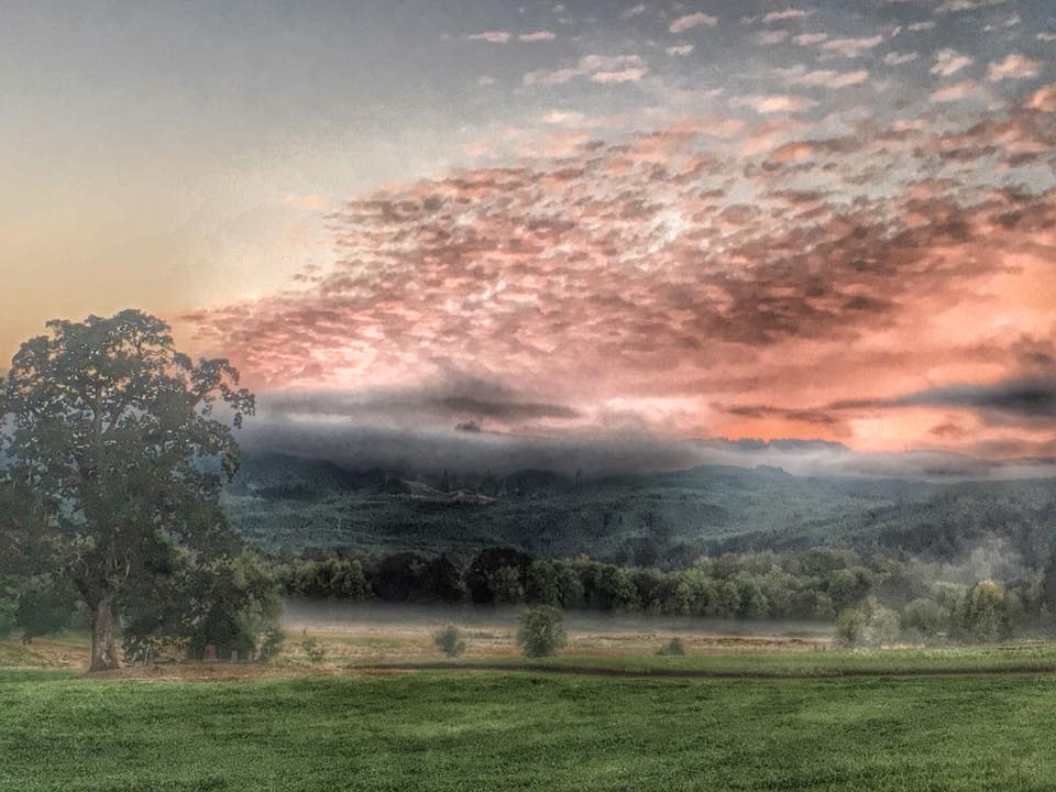 Pamela's painted landscape at Sauvie R2B2.jpg