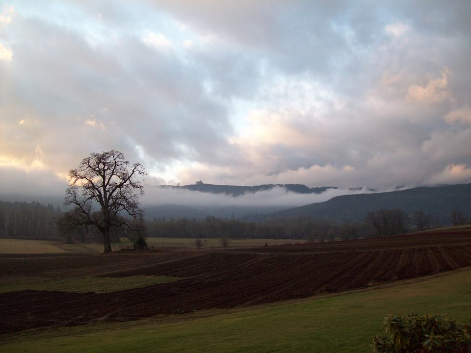 r2b2 landscape.jpeg