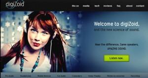 digizoid-homepage-300x158.jpg