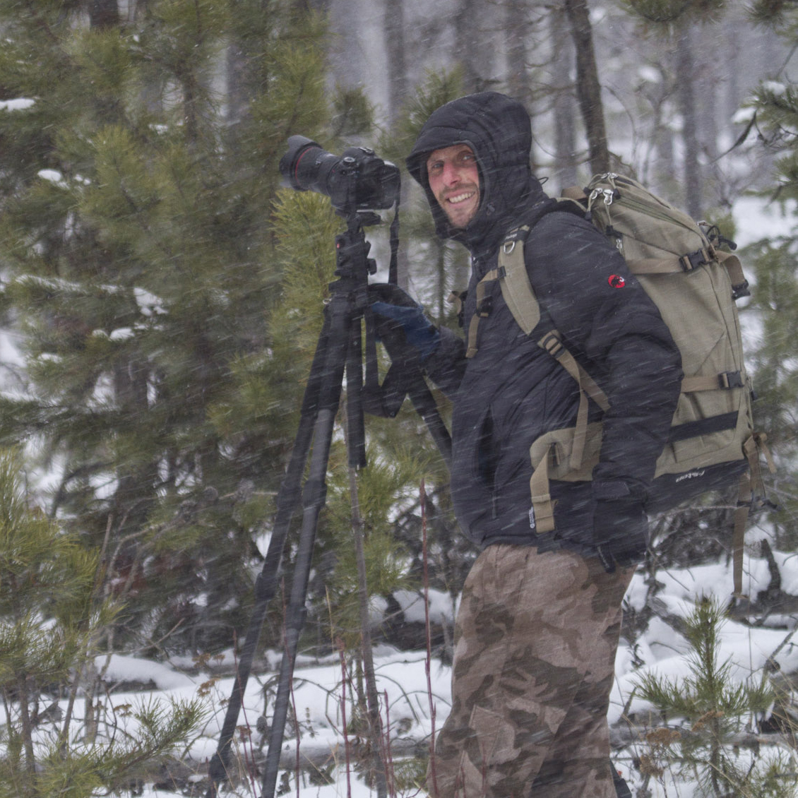 David Moskowitz  •  Producer   Photographer, Biologist   davidmoskowitz.net