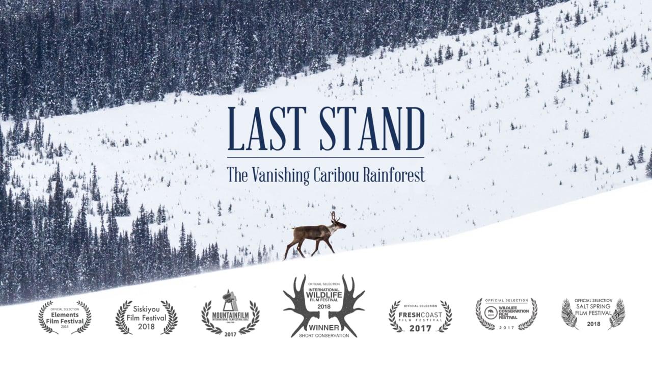 last_stand.jpg