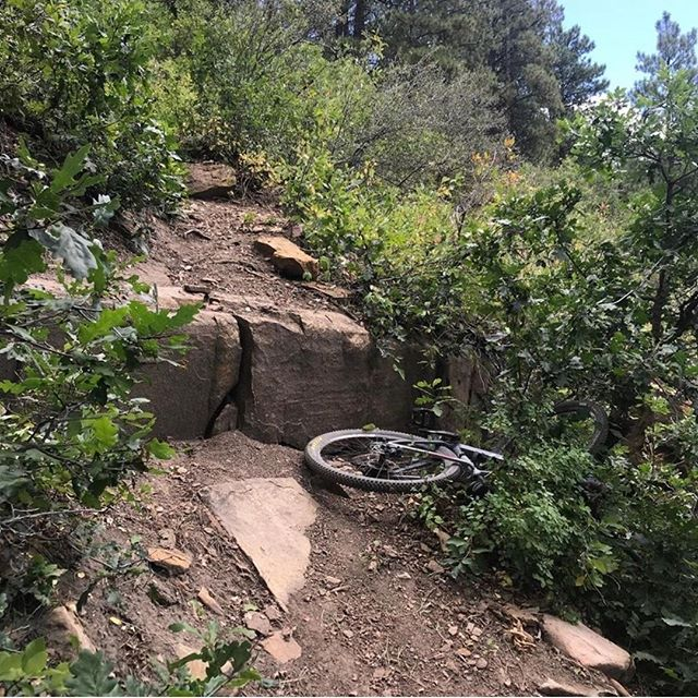 @toby_mtb2 -- 📸 credit!⁠ Use #pedaldurango or tag to be featured!⁠ ⁠ What are you going to do in the coming season?  Check out what's new and what you may be missing out on in Durango!  Check out our site, link in bio @pedaldurango!⁠ .⁠ .⁠ .⁠ .⁠ .⁠ .⁠ .⁠ #downhillmountainbiking #downhill #mtb #downhillmtb #mtblife #mountainbike #enduromtb #dh #mountainbiking #enduro #bikelife #bike #mtblove #freeride #mtbdownhill #downhillbike #dhmtb #bikepark #cycling #gopro #mtbpictureoftheday #downhilllife #rockshox #redbull #mtbenduro #follow #mtbgram #mtbiking #visitdurango⁠