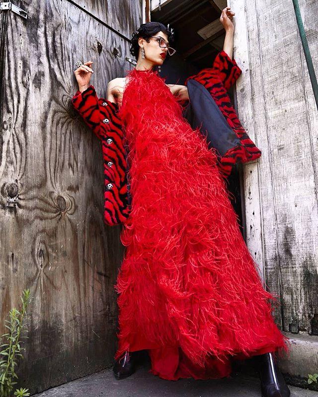 "The Red Marabou Feather dress from #MAOPR client @aidakaasdesign featured in: ""Men at work""❤️❤️❤️ @platformme_ ISSUE III  Creative/ styling: @rachelbalzarini Model: @curlycedd  Hair: @whosbibb @rochelle_colorartist MUA: @shannonrodriguezartistry Jewelry: @laruicci ❤️❤️❤️ #platformmemagazine #platformme #aidakaas #aidakaasdesign #fashion #style #editorial #laruicci #gowns"