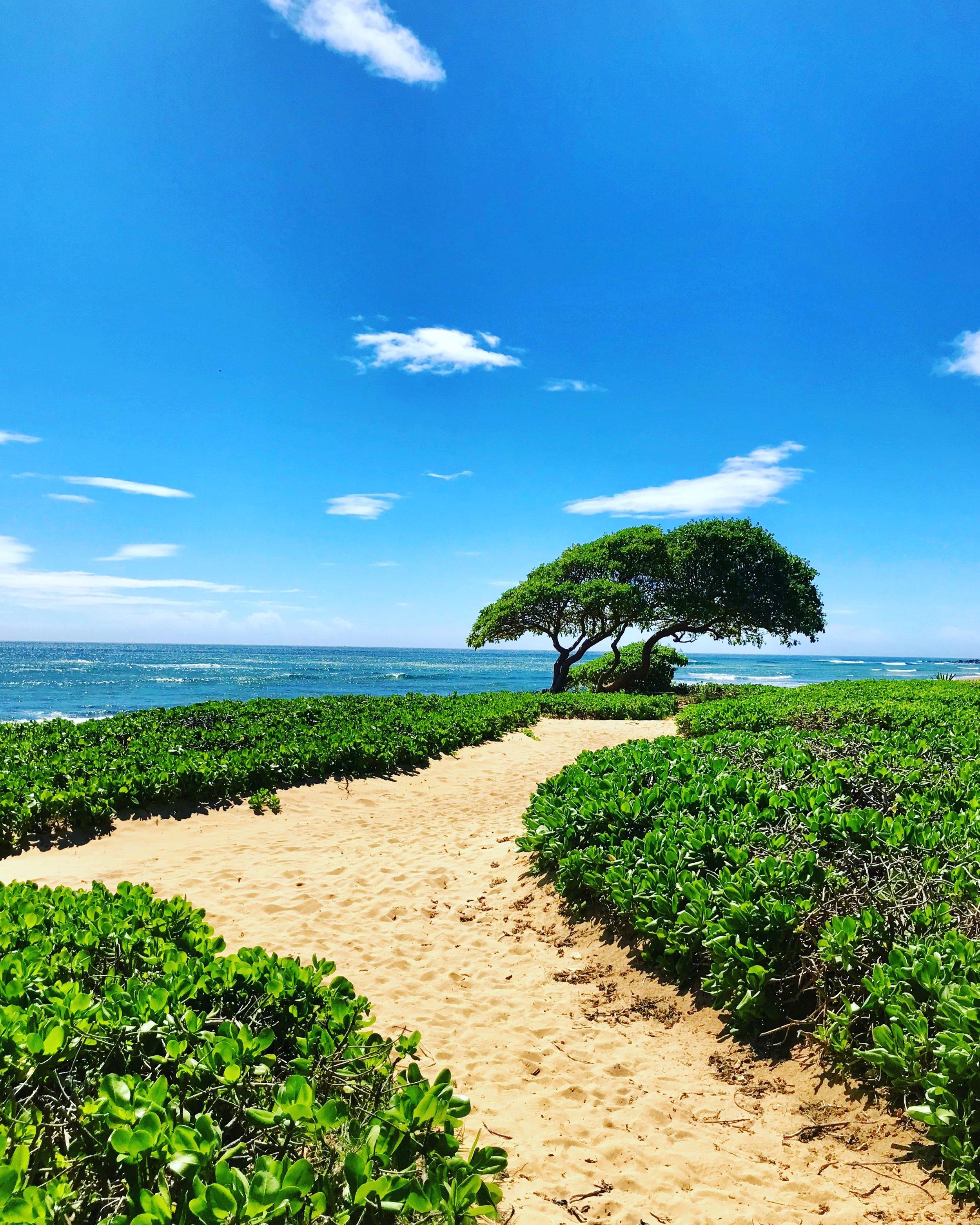 17- beach.JPG