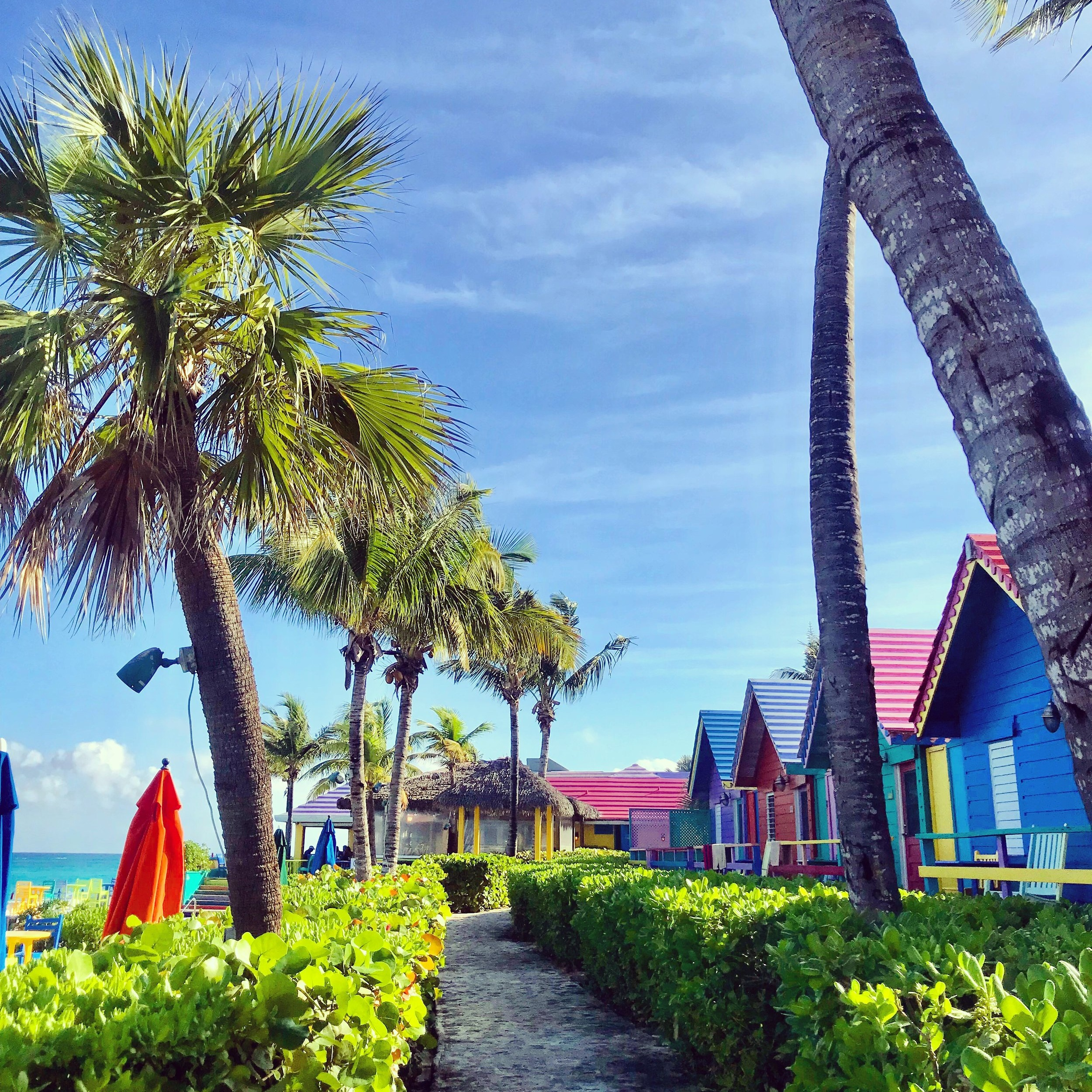 This (Lesser-Known) Side of Paradise: Explore Bahamian Culture in Nassau - THE BERNARDSVILLE NEWS: If you think you've experienced all the Bahamas have to offer because you visited the islands for a weekend getaway (or spring break bacchanal), think again. There is more to the Bahamas than Senor Frogs and swimming with pigs although, of course, both activities certainly hold their own appeal. But just outside your resort, or inland from the sandy beach is a thriving culture and food scene at your fingertips.(22 April 2019)