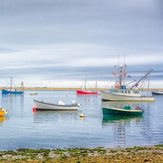 Why You Should Spend A Fall Weekend In Chatham, Massachusetts - FORBES: Much has been written about the glory that is Cape Cod in the summertime, and while there's no denying the appeal of a New England weekend during the hottest months of the year, less has been said about the most underrated (and picture-perfect) season to visit: The fall.(31 August 2019)