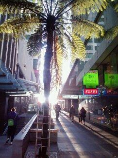 Swanson Street at Sunset.jpg