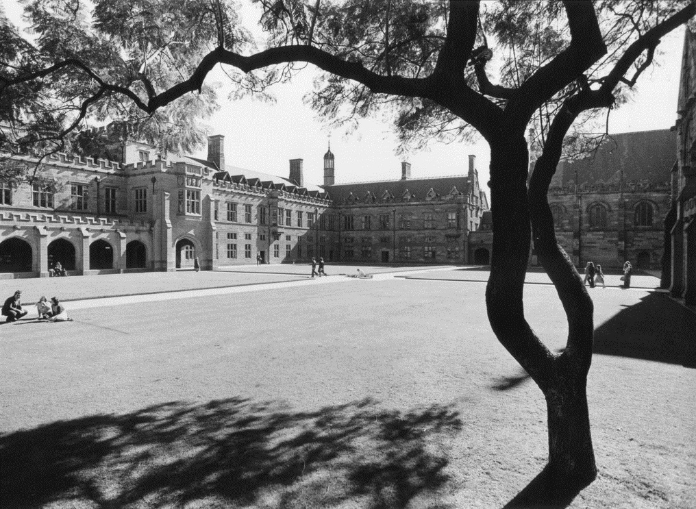 The University of Sydney in 1974