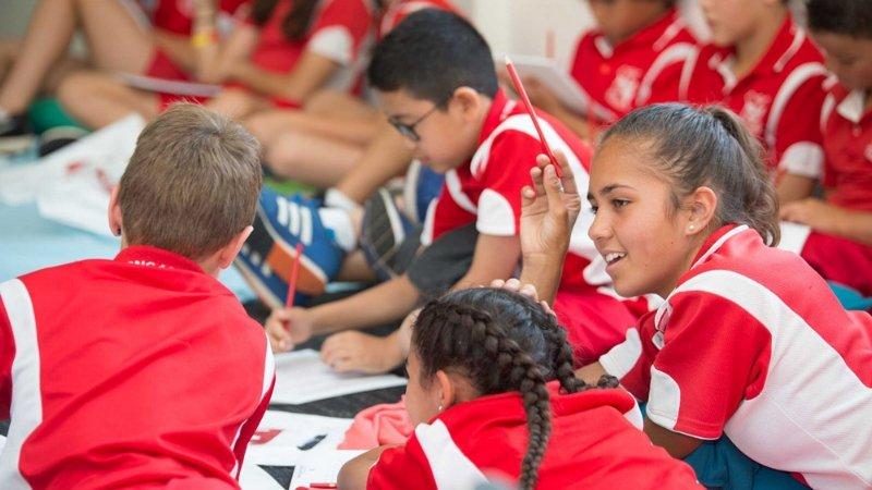 Civics Education Programs -