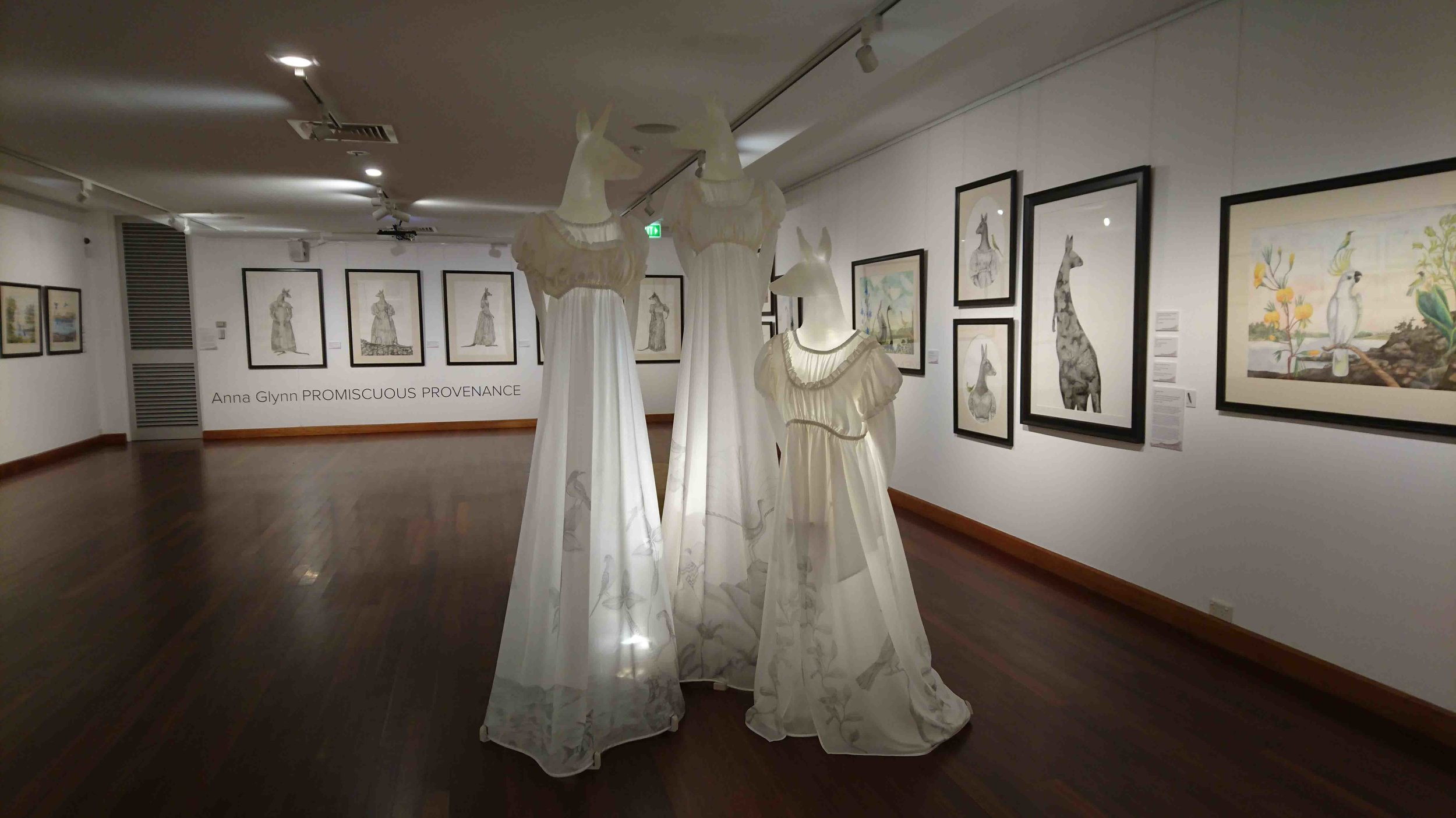 View of Promiscuous Provenance exhibition featuring Gowns | Artist - Anna Glynn
