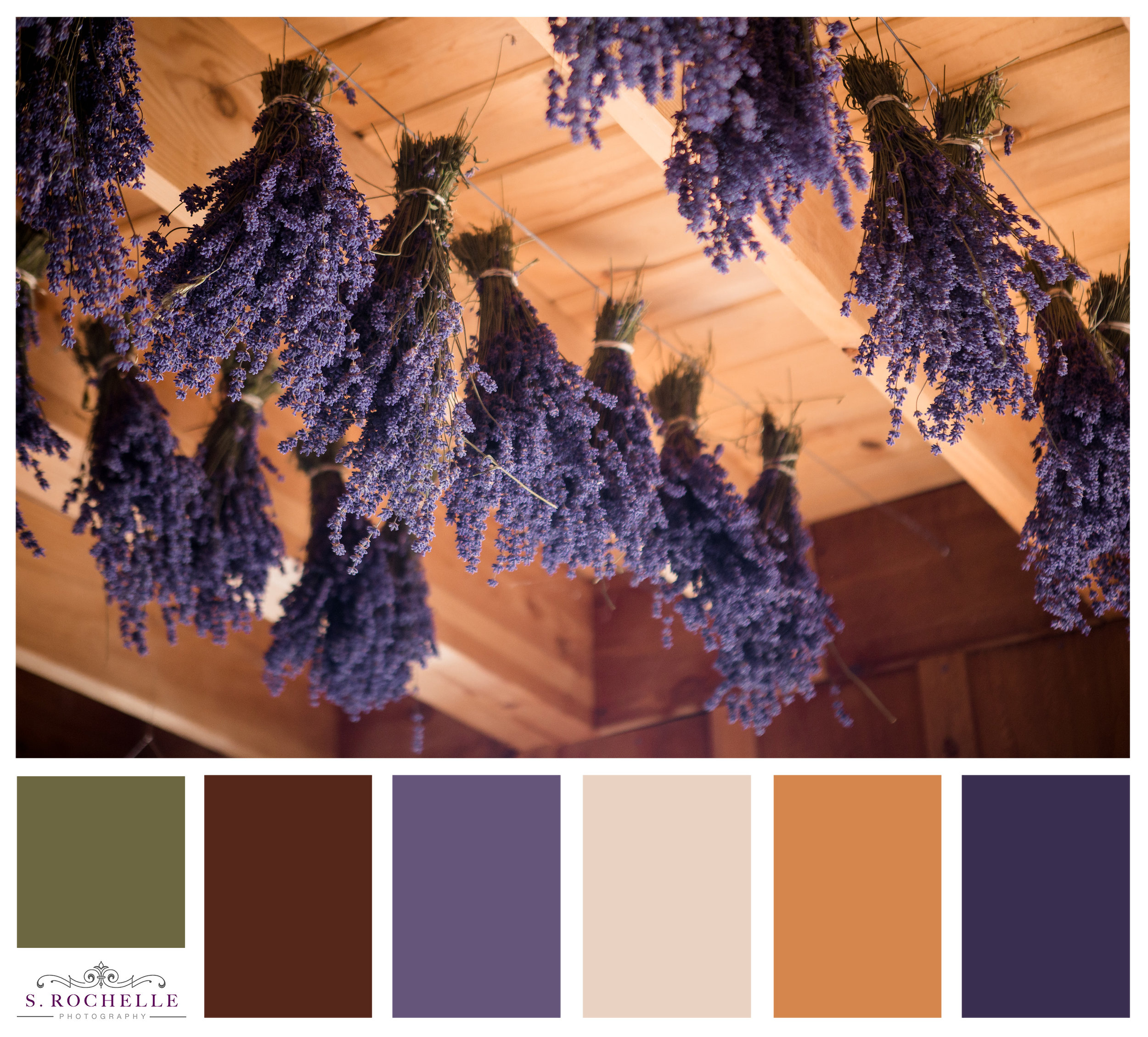 Lavender_Drying_S_Rochelle_Photography_20170715_IMG_5435_ColorPalatte.jpg