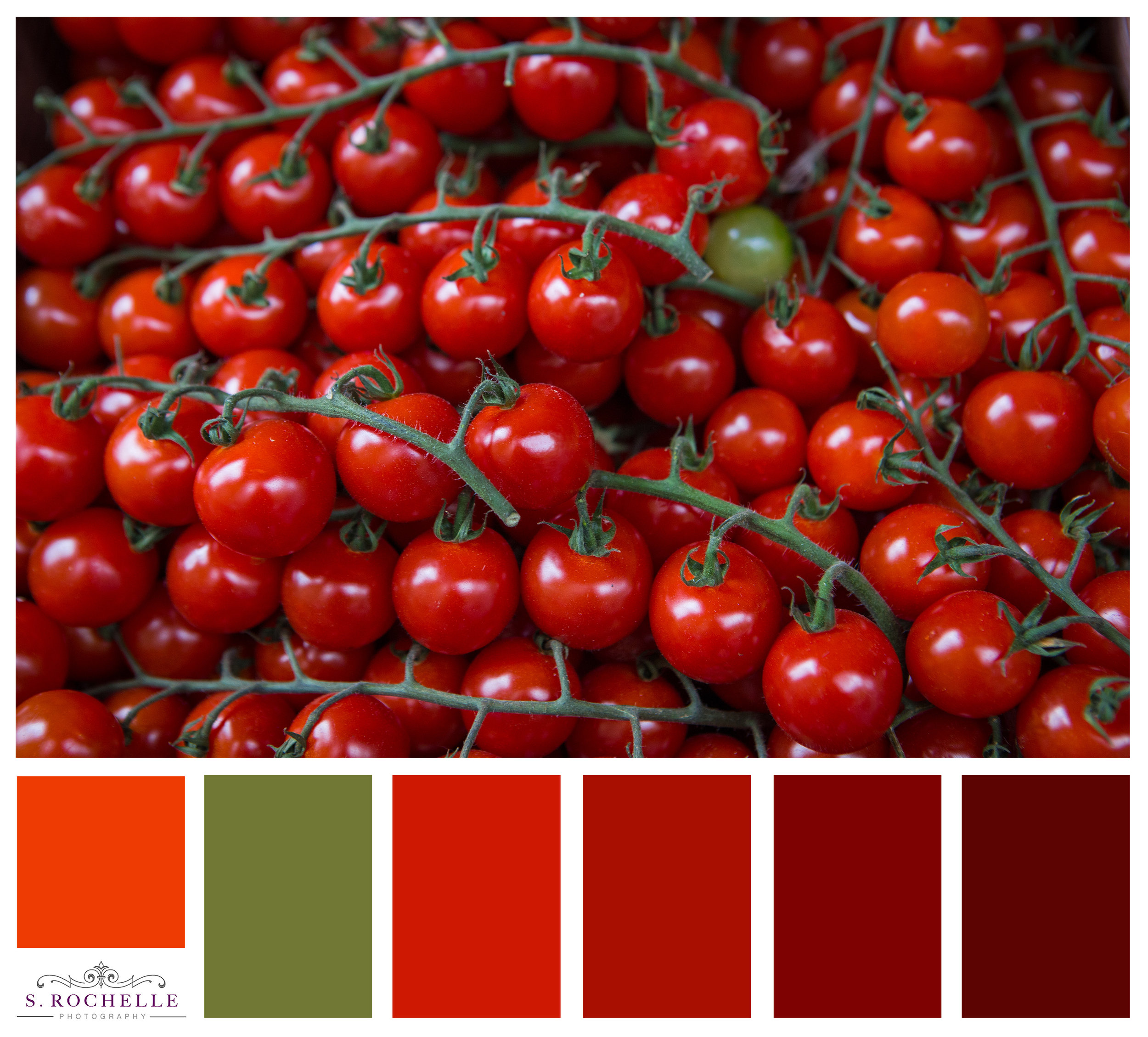 Cherry Tomatos Paris France_S_Rochelle_Photography_20170919_IMG_1021_ColorPalatte.jpg