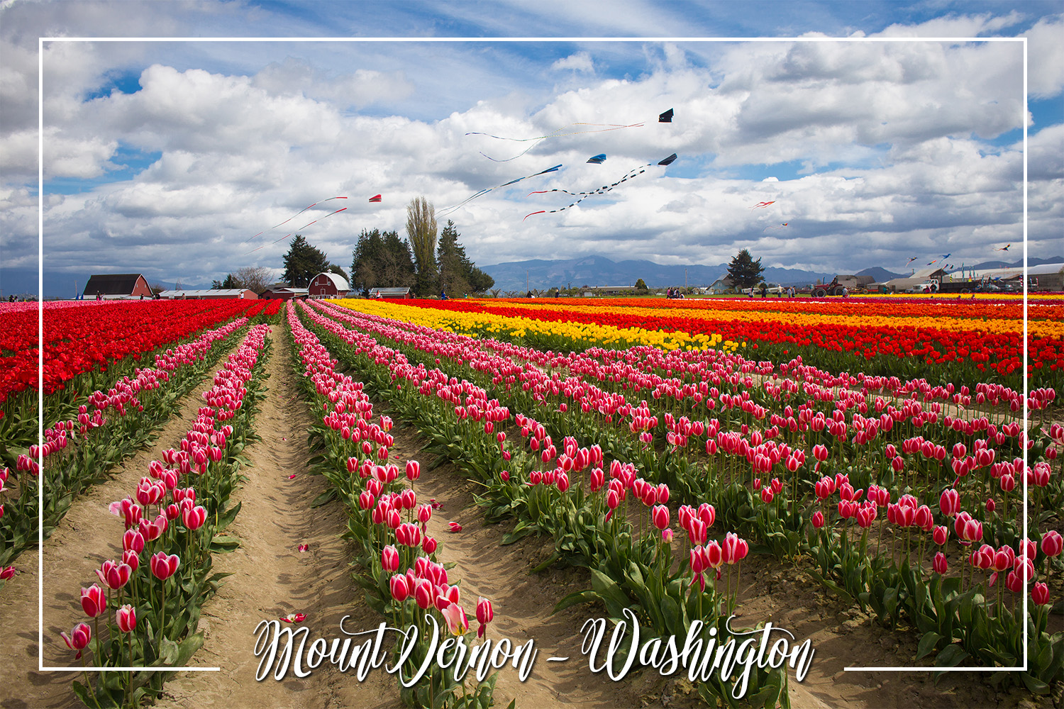 S Rochelle Photography Travel Tidbits Mount Vernon Washington.jpg