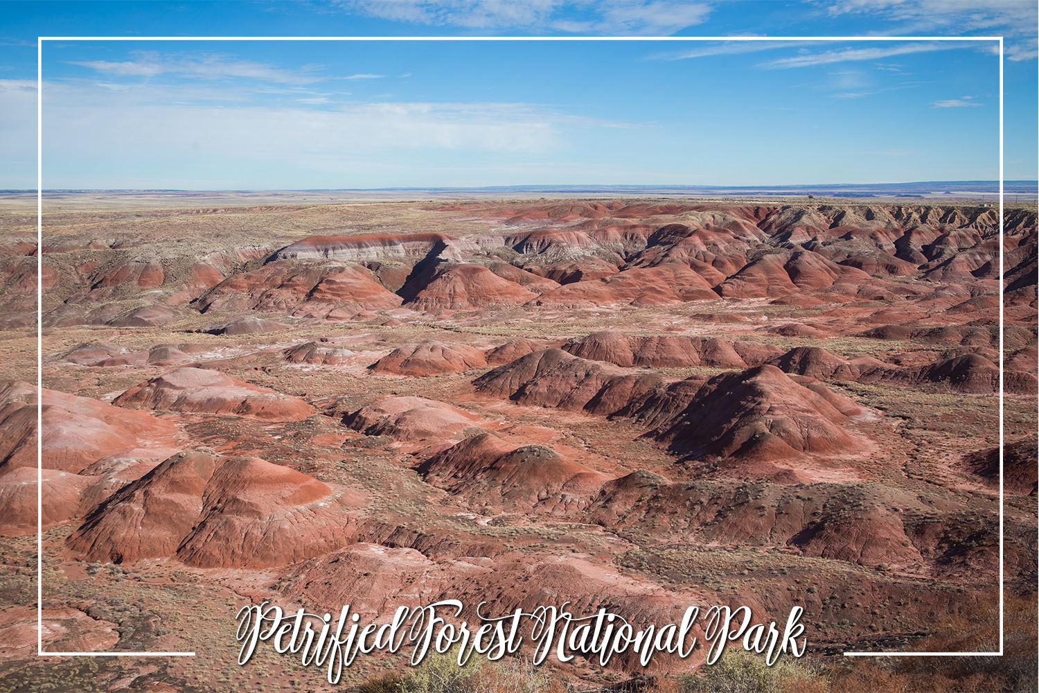 S Rochelle Photography Travel Tidbits Petrified Forest National Park.jpg
