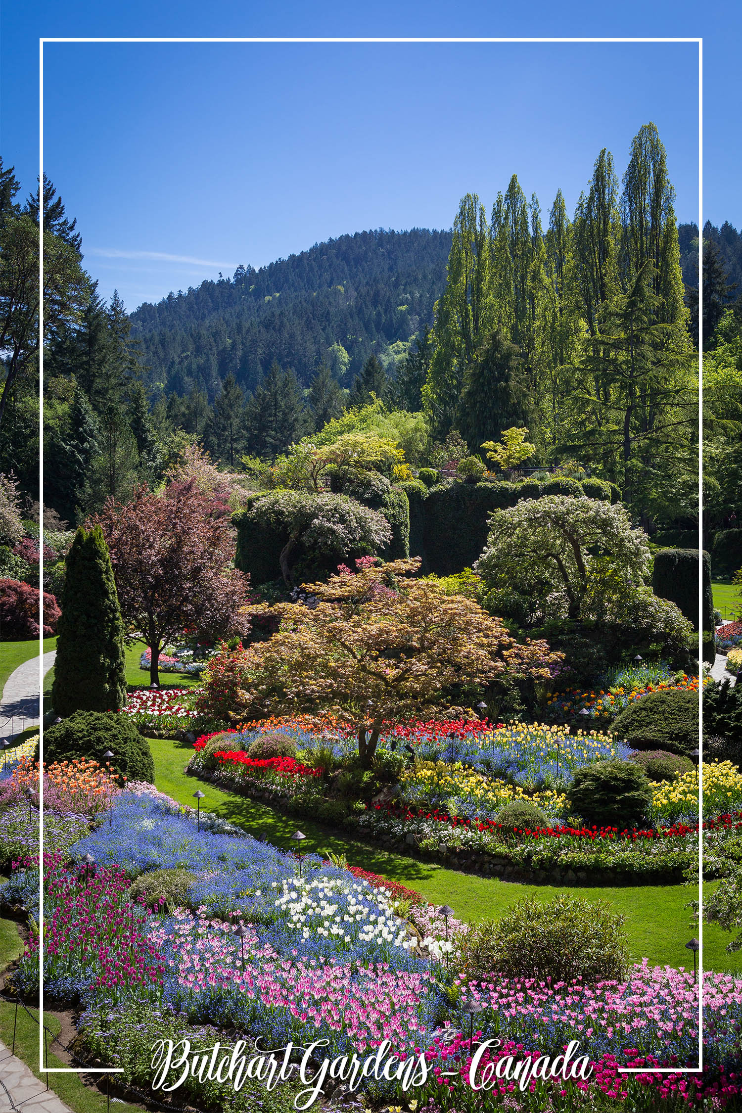 S Rochelle Photography Travel Tidbits Butchart Gardens Canada.jpg