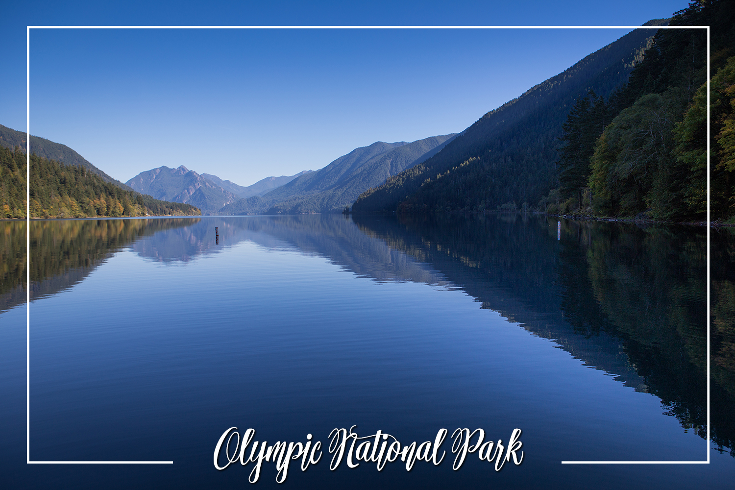 S Rochelle Photography Travel Tidbits Olympic National Park 3.jpg