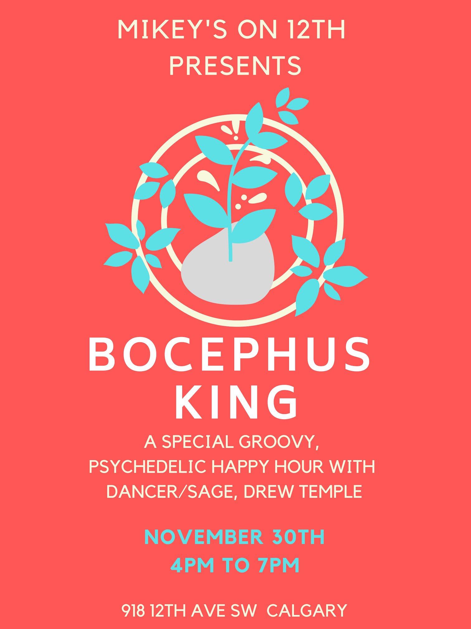 Bocephus KIng - HH.jpg