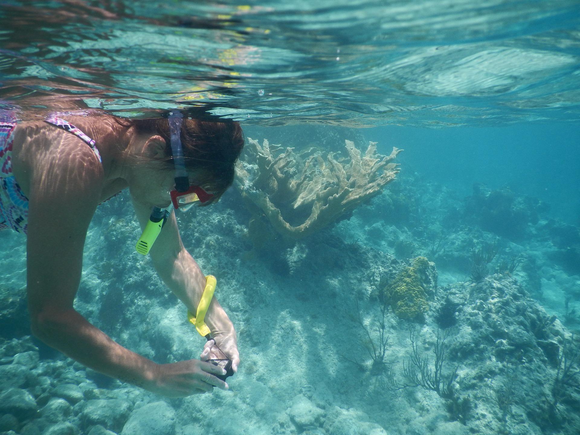 snorkel-1739284_1920.jpg