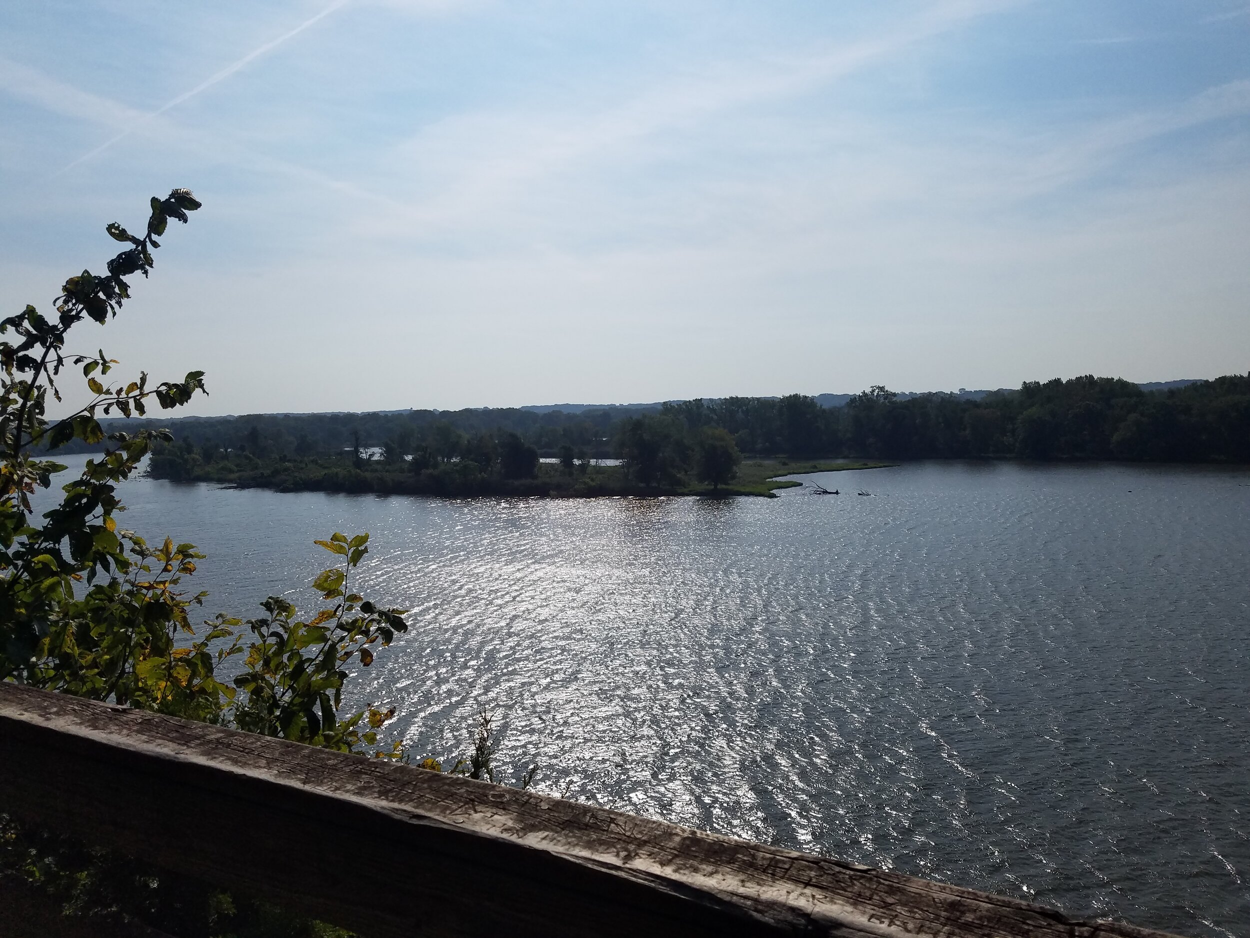 View of the Illinois River from the trail.