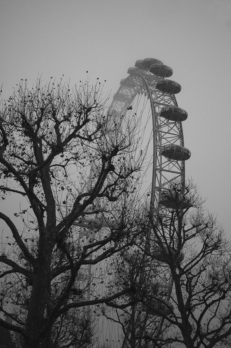London Eye, 2016