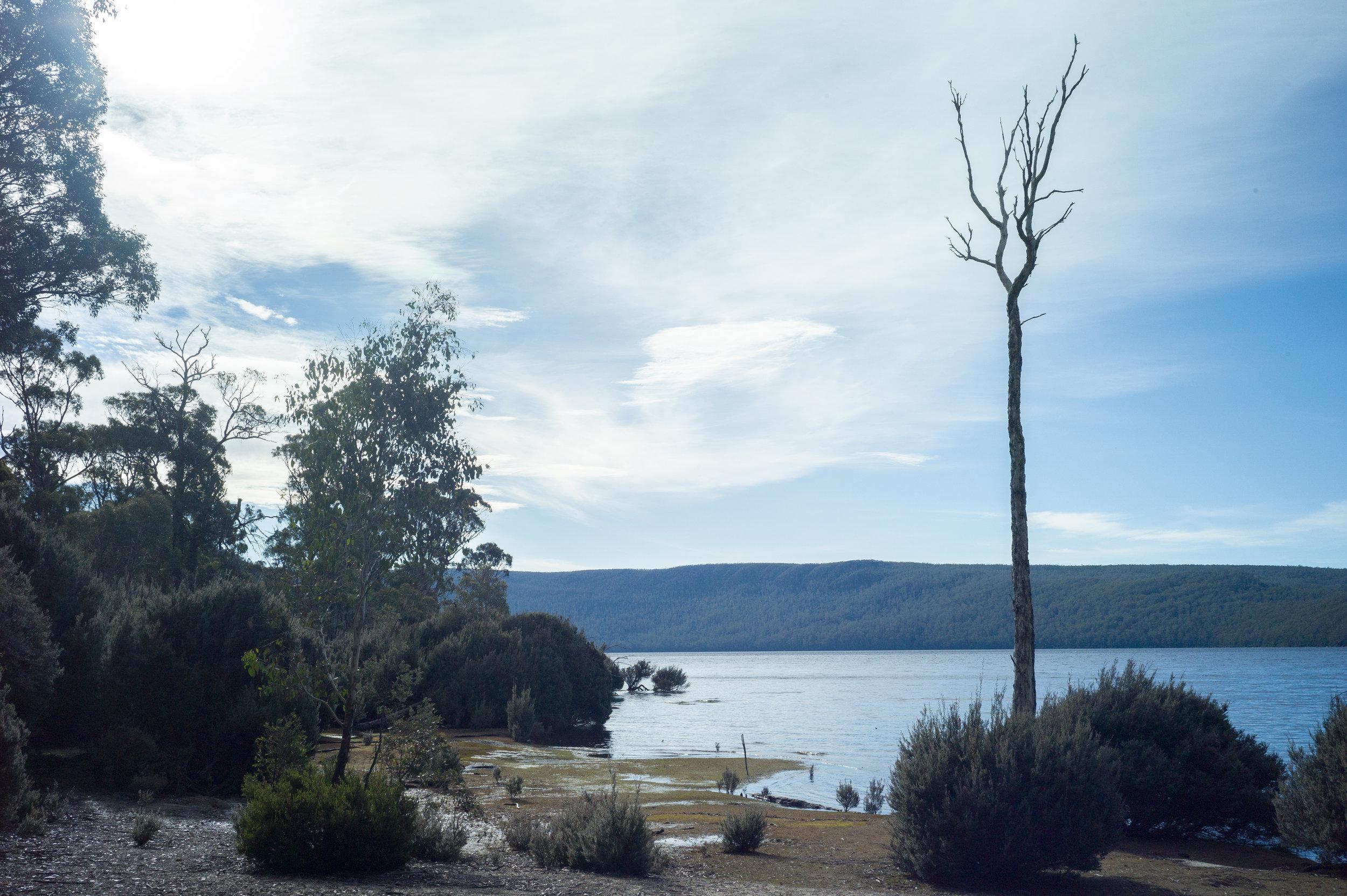 Lake St. Clair, Tasmania, 2019