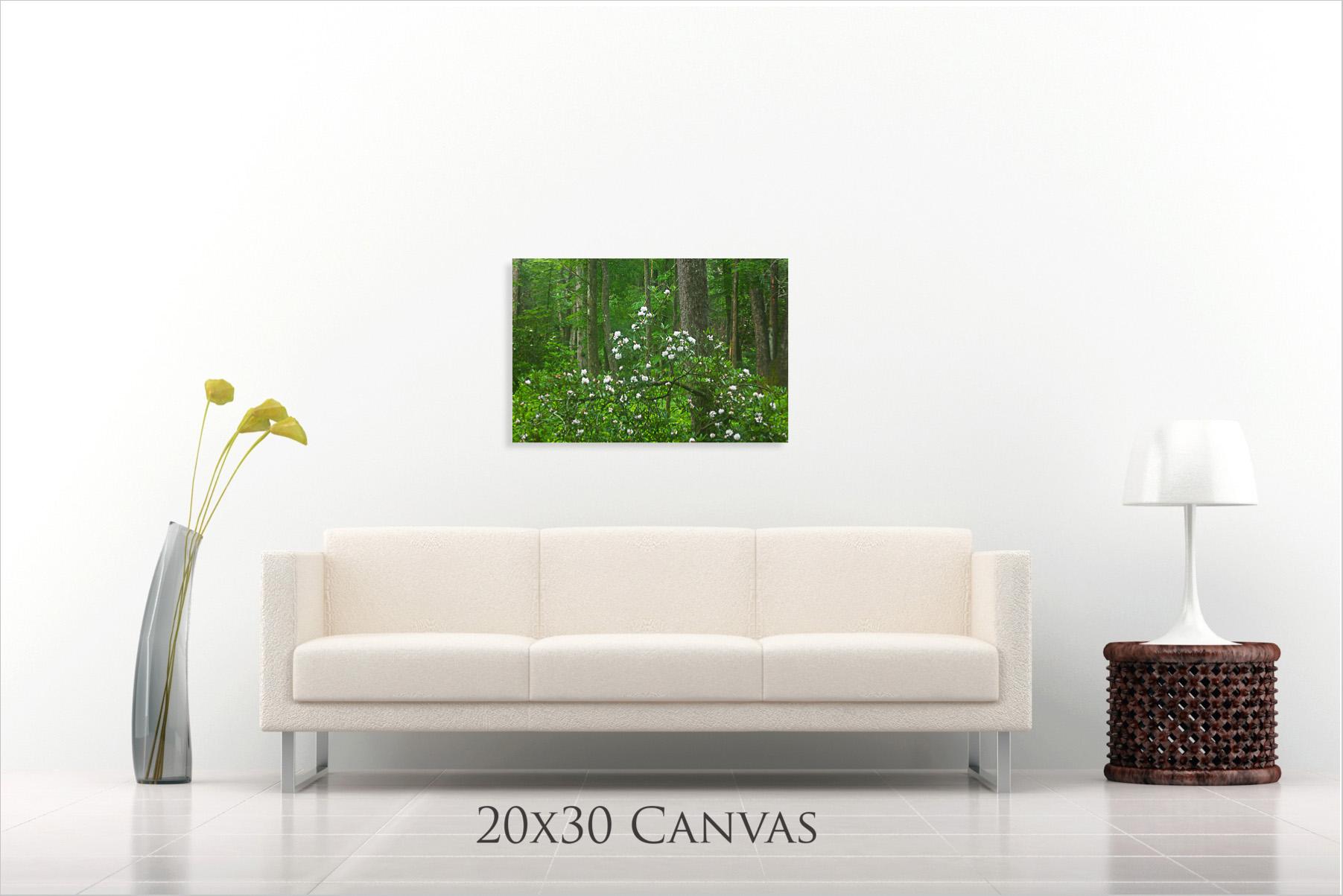 20x30 Landscape Preview.jpg