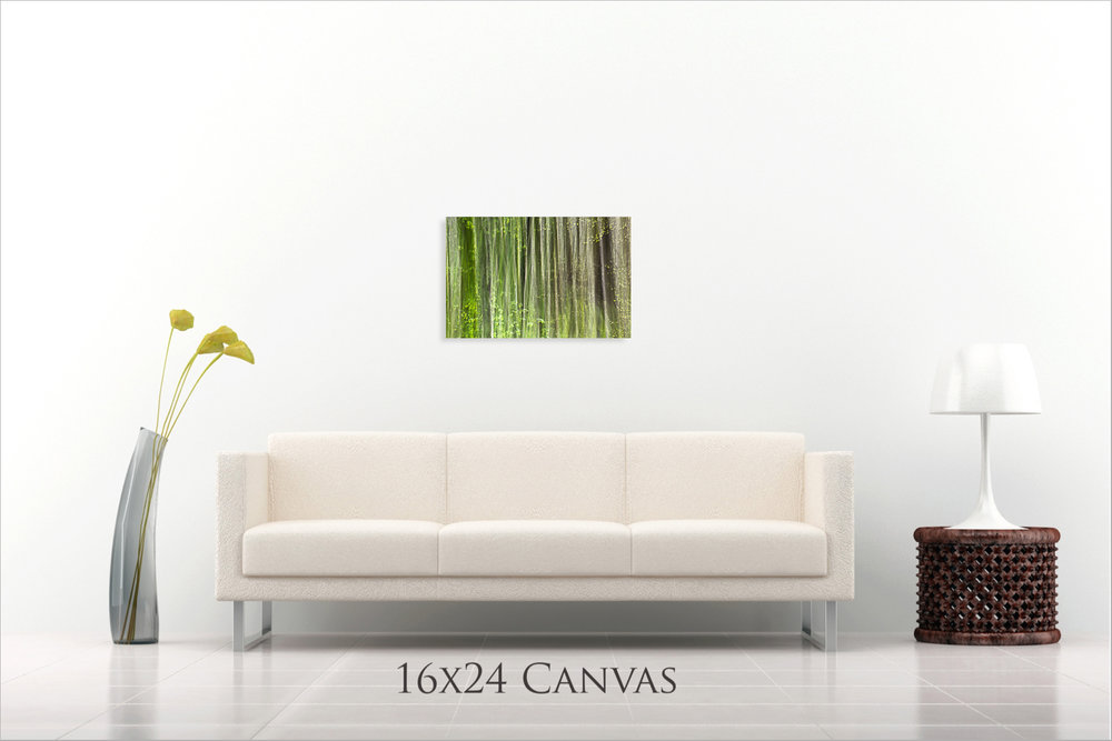 MWP+16x24+Canvas+Preview.jpg