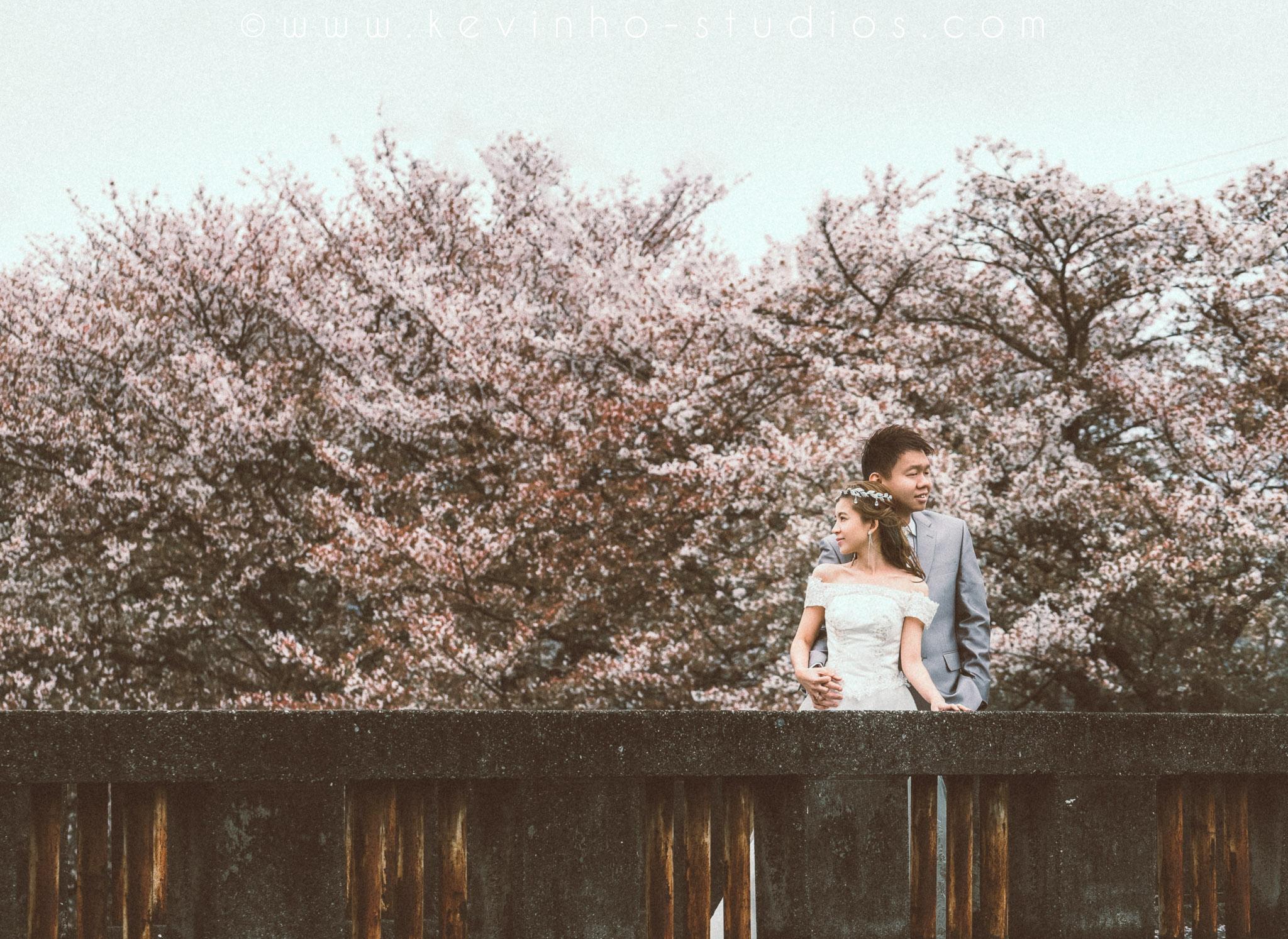 Sakura pre-wedding.JPG