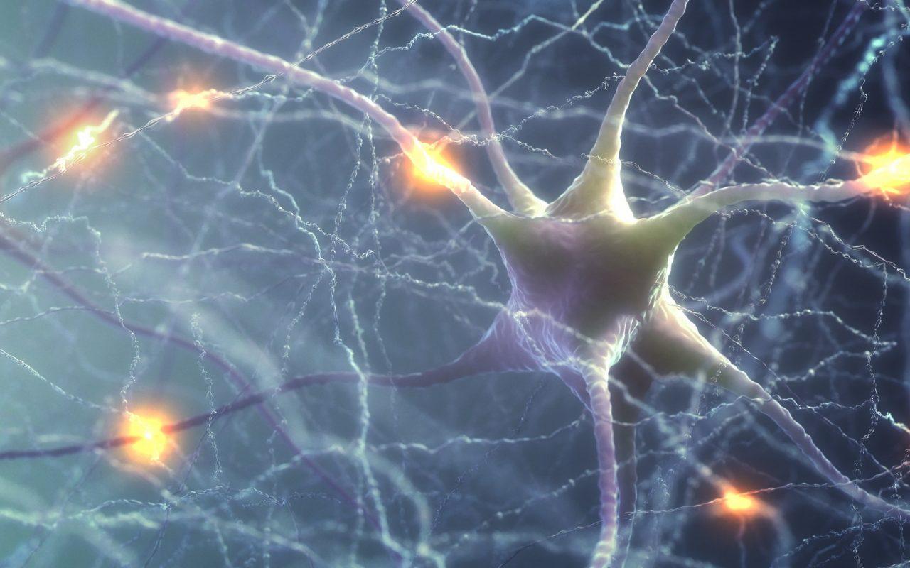third-cannabinoid-receptor-discovered-1280x800.jpg