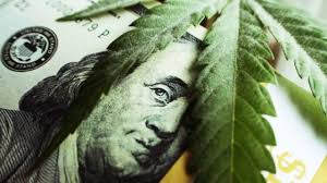 Cannabis is a great investment that can yield high returns, sources say.