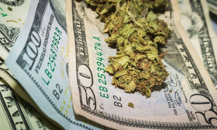 credit-union-offer-banking-services-alaska-cannabis-businesses-featured.jpg