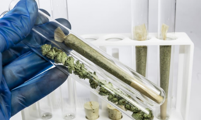 uc-berkeley-opens-cannabis-research-center-study-effects-industry-featured.jpg
