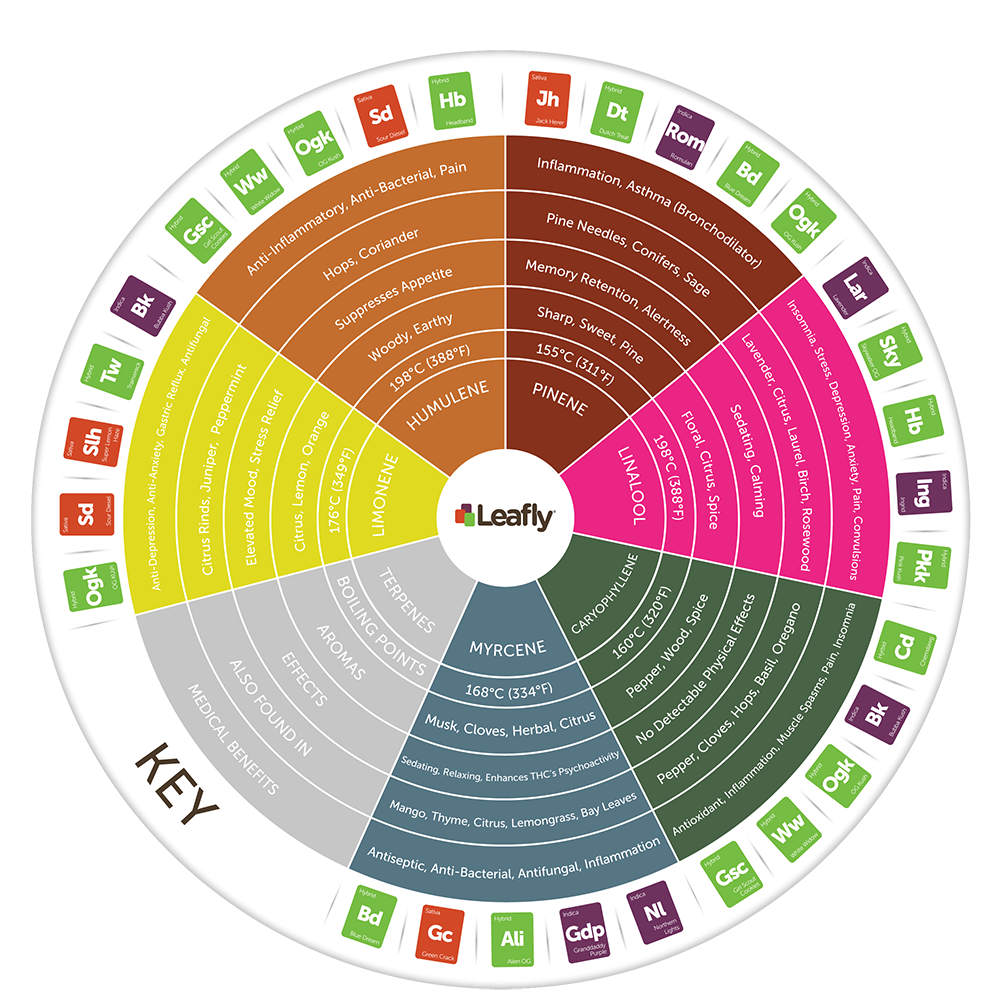 terpene chart leafly.png