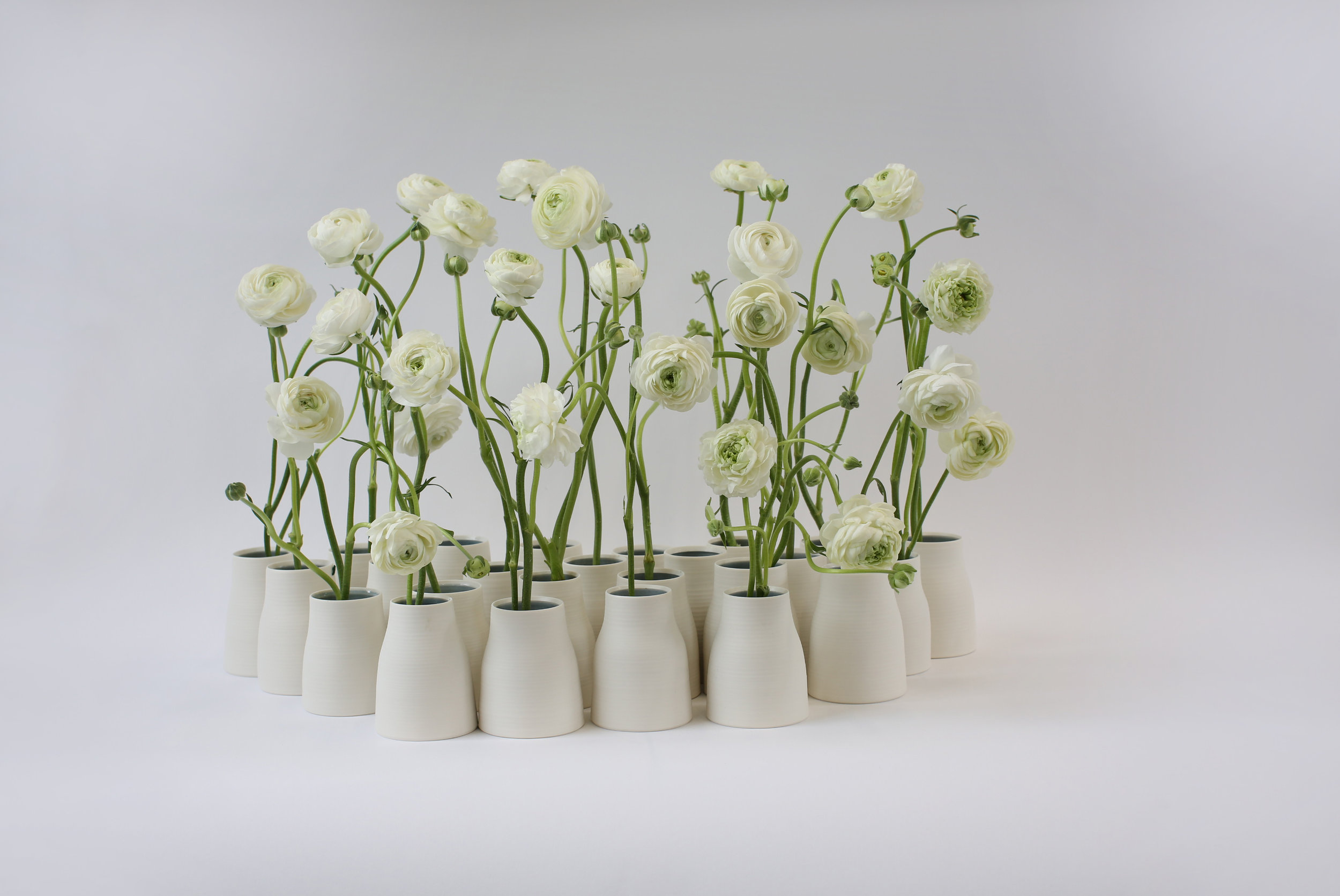 McQueens publicity shot of the Anniversary Vases with ranunculus flowers
