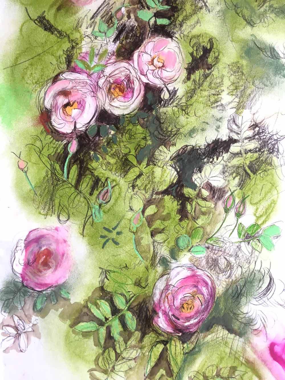 Wild Rose: Sketch Detail