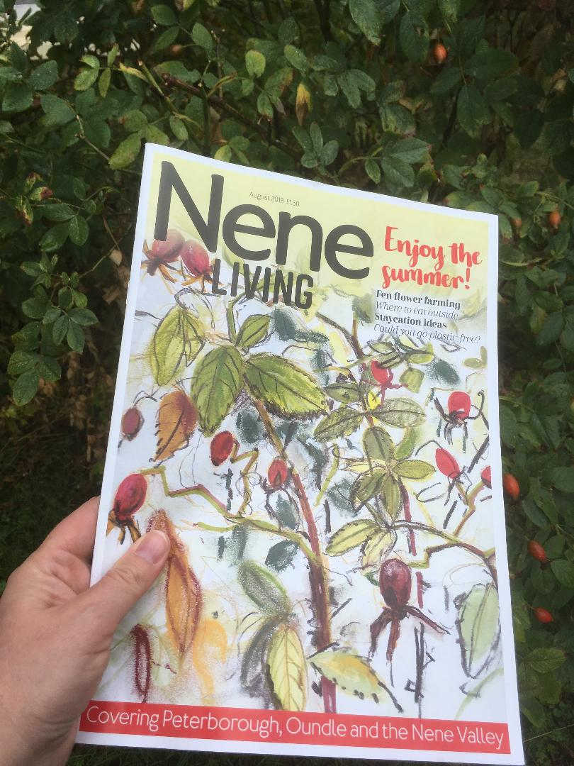Nene Living Magazine: Featuring Rosehip Sketch