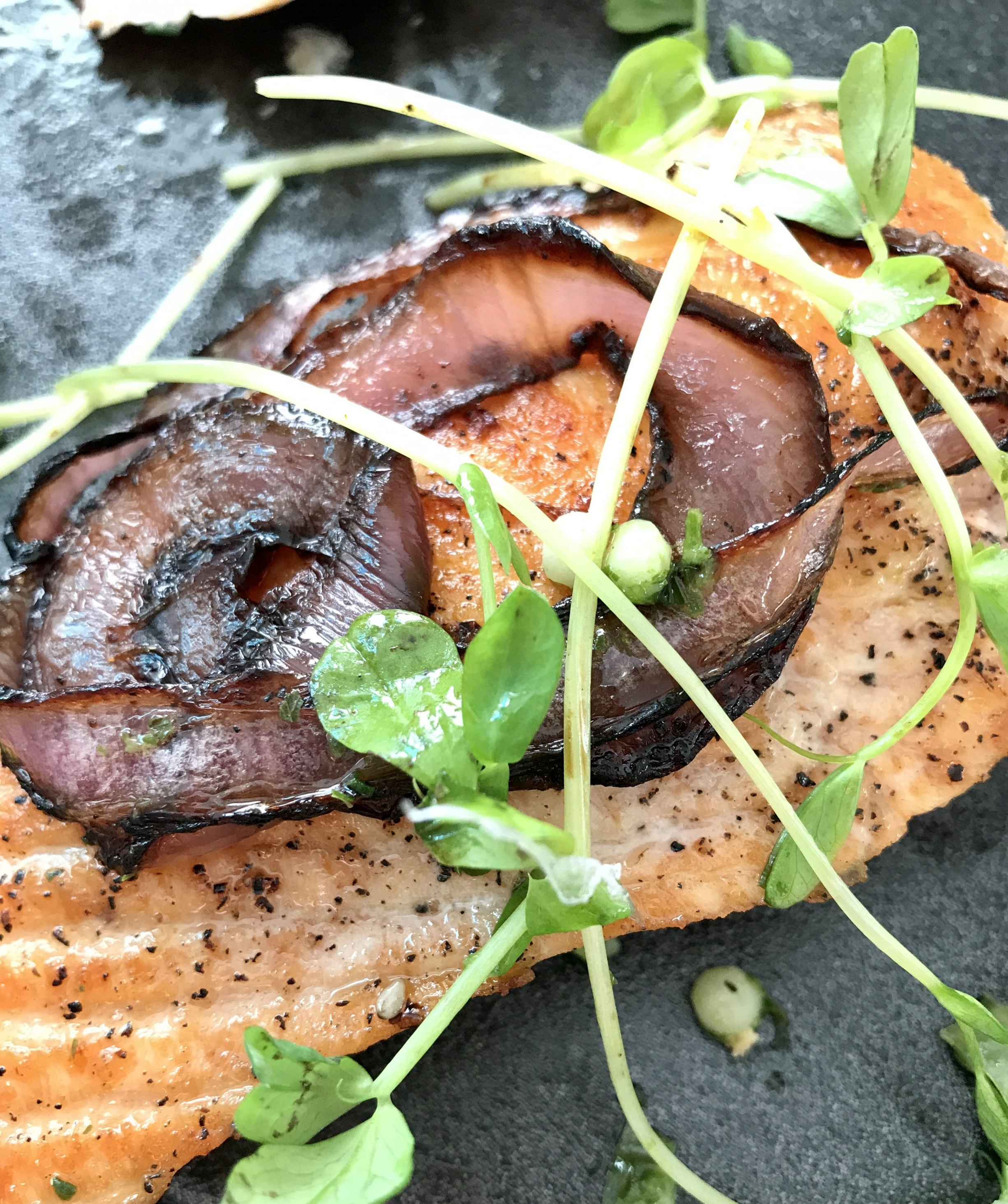 Salmon is a fantastic source of protein and good fat