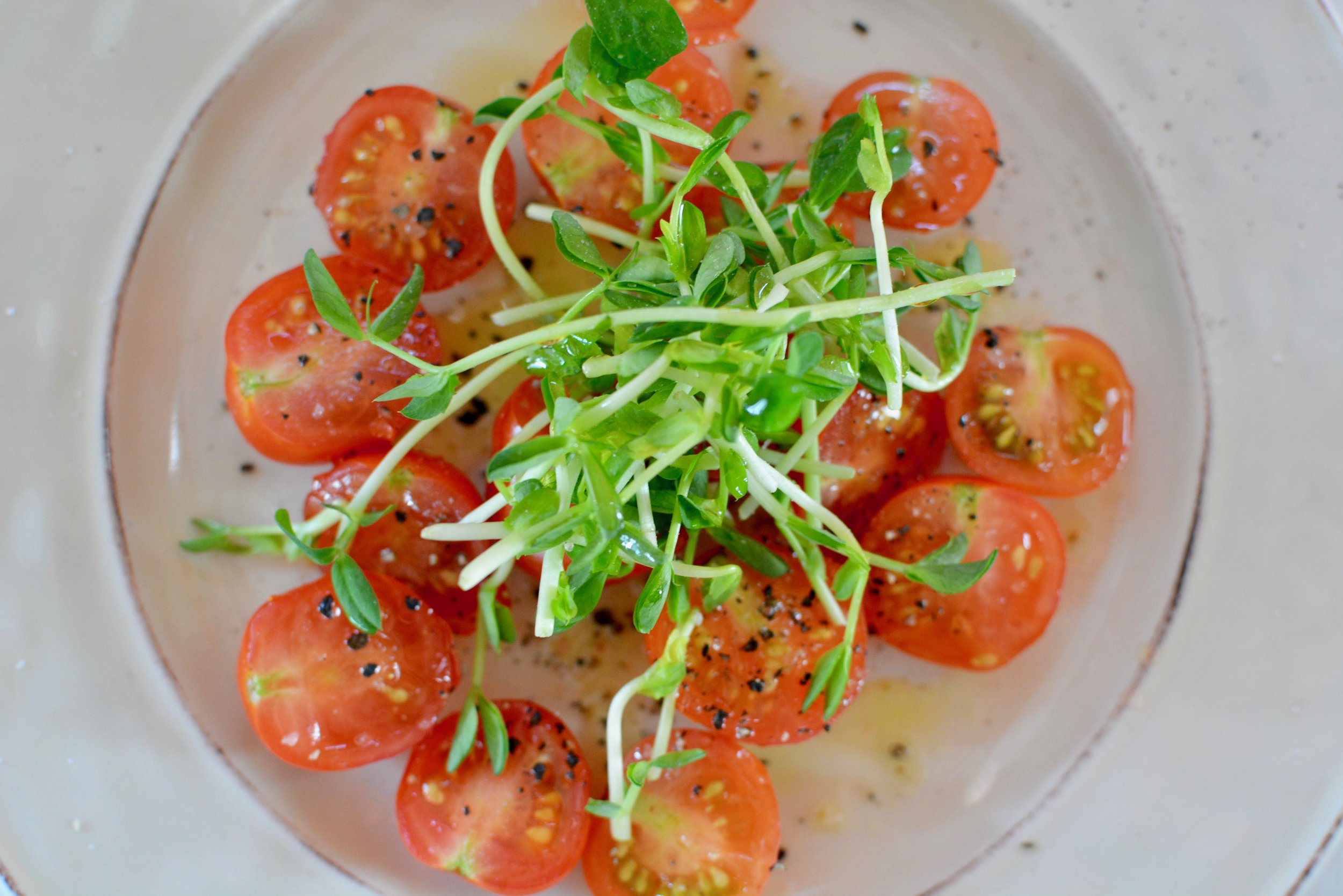 tomatoes are easily available and liked by most and make an excellent prebiotic