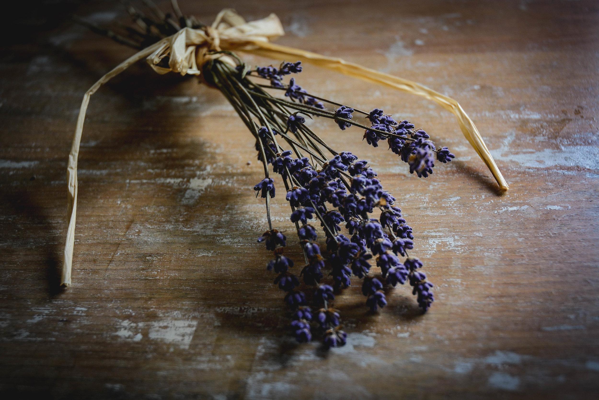 lavender  (1 of 1).jpg