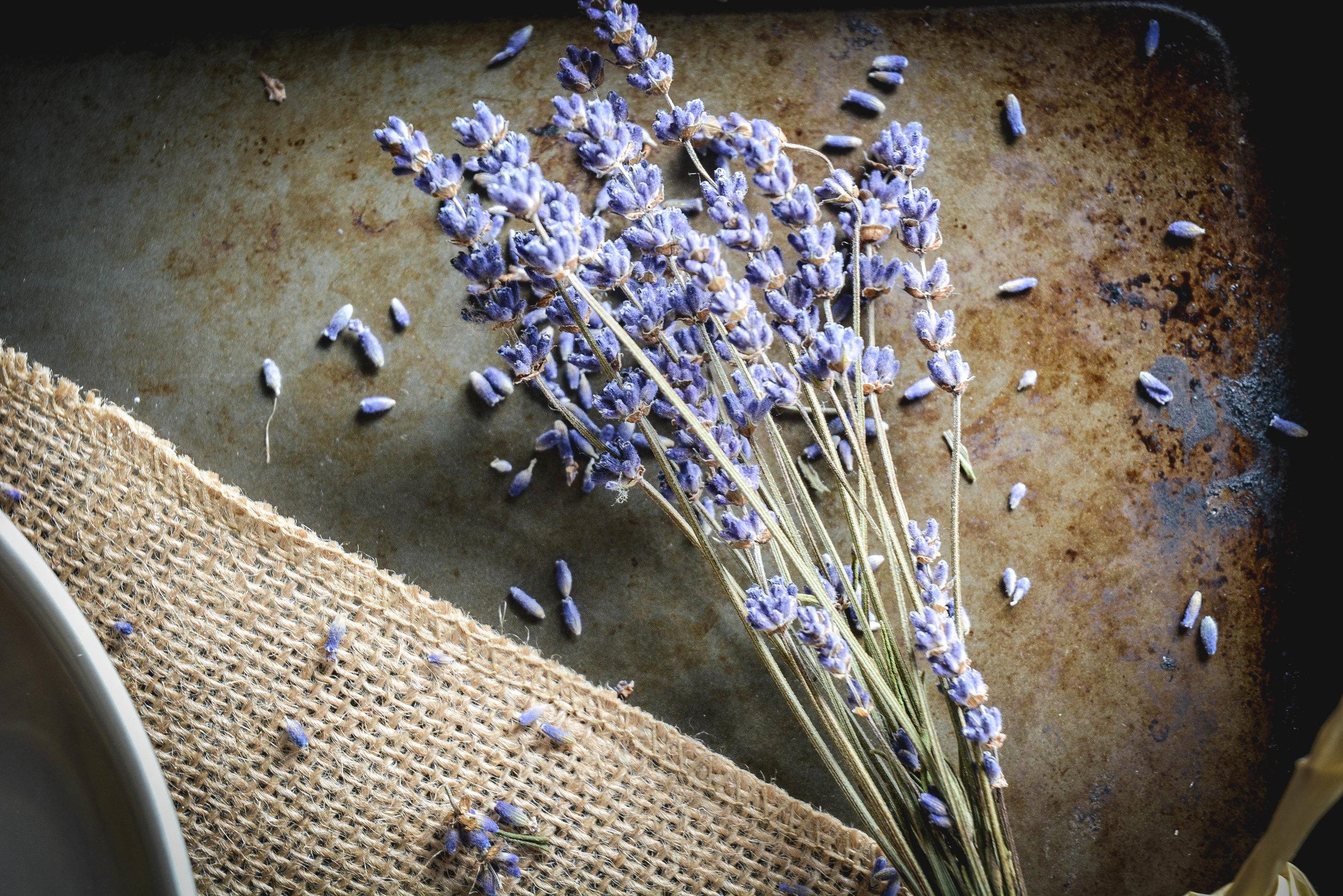 lavender pancakes (20 of 20).jpg