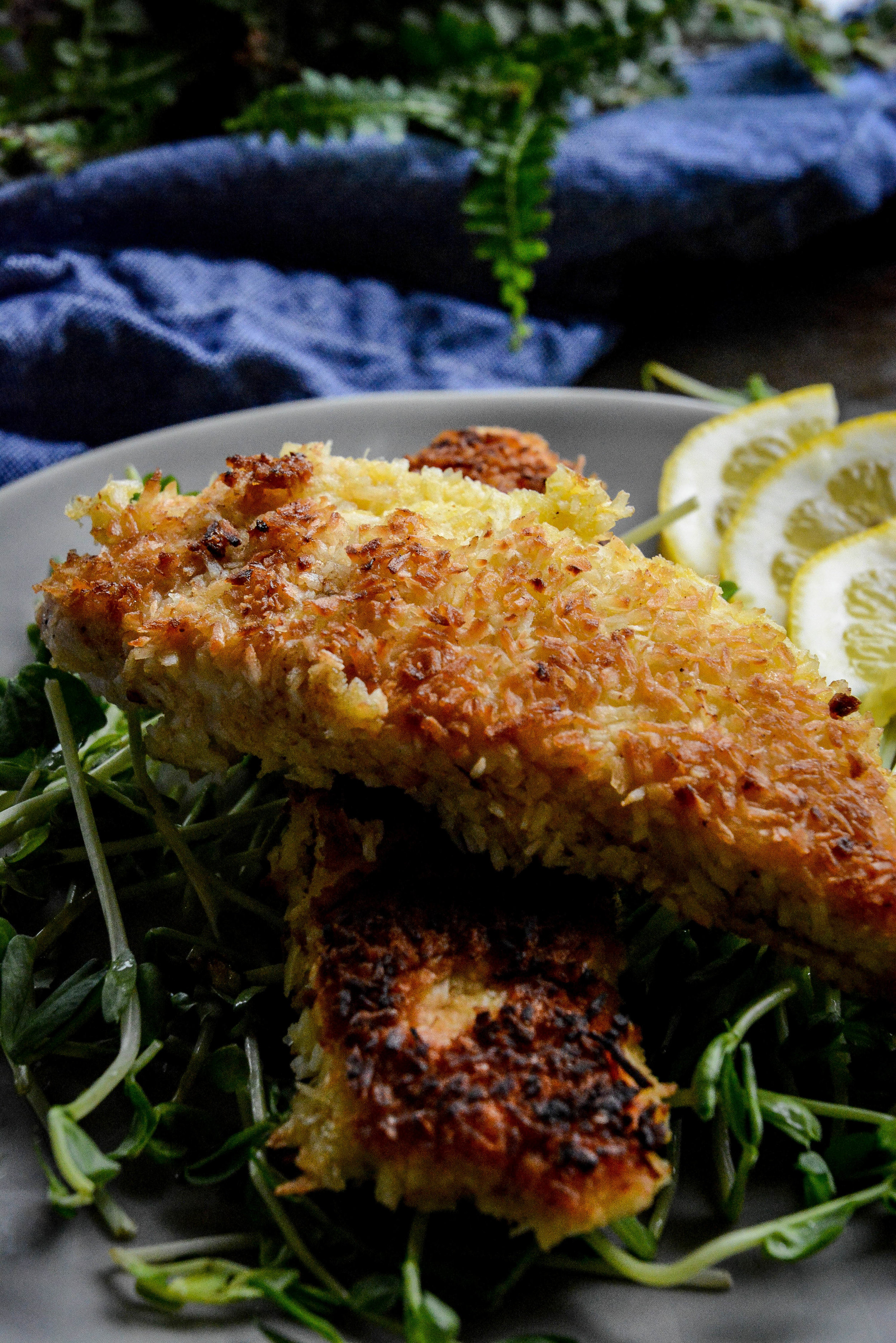 coconut crusted chicken tenders with honey mustard sauce