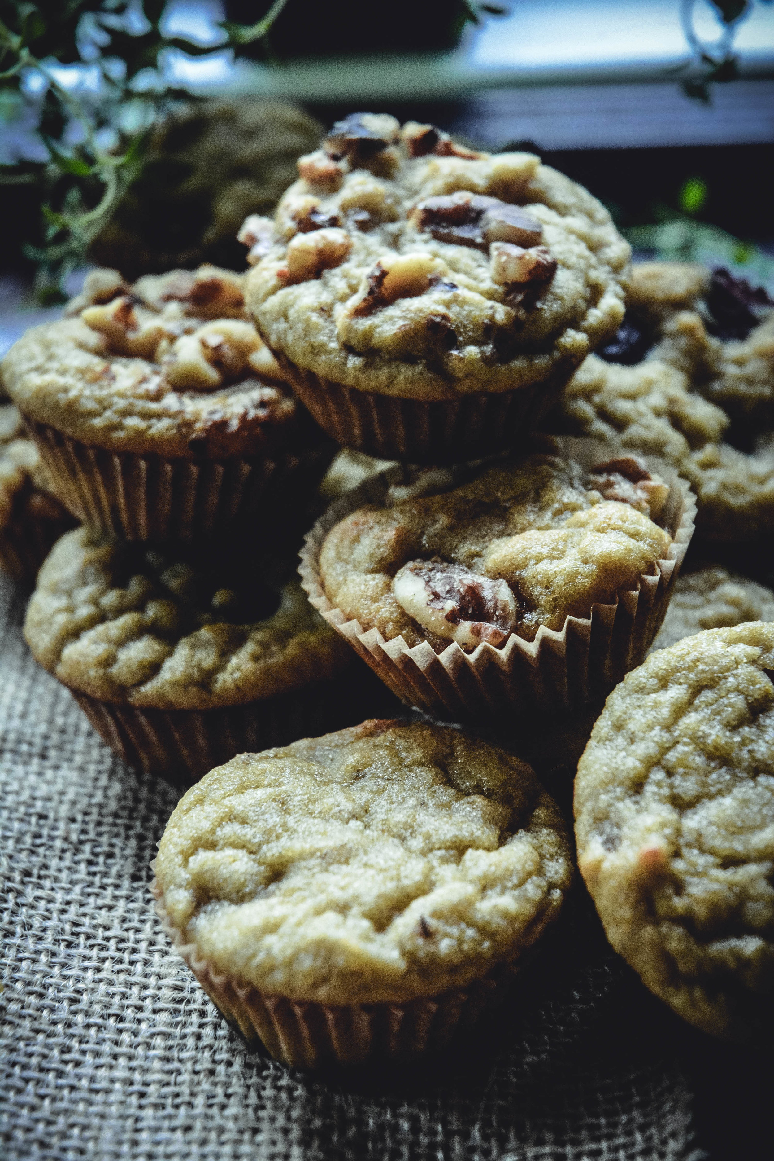 paleo collagen mini muffins