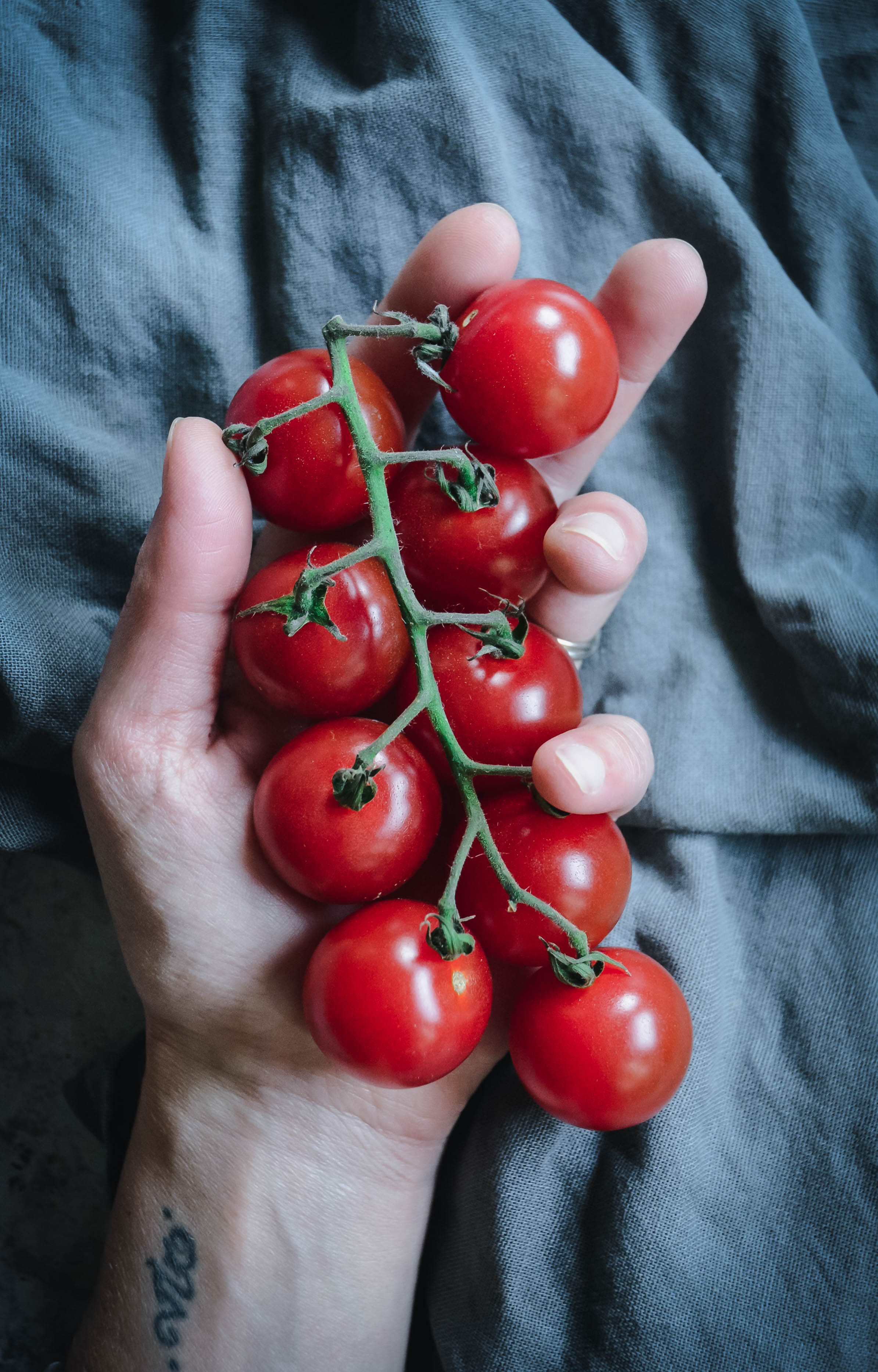 hand and tomatoes