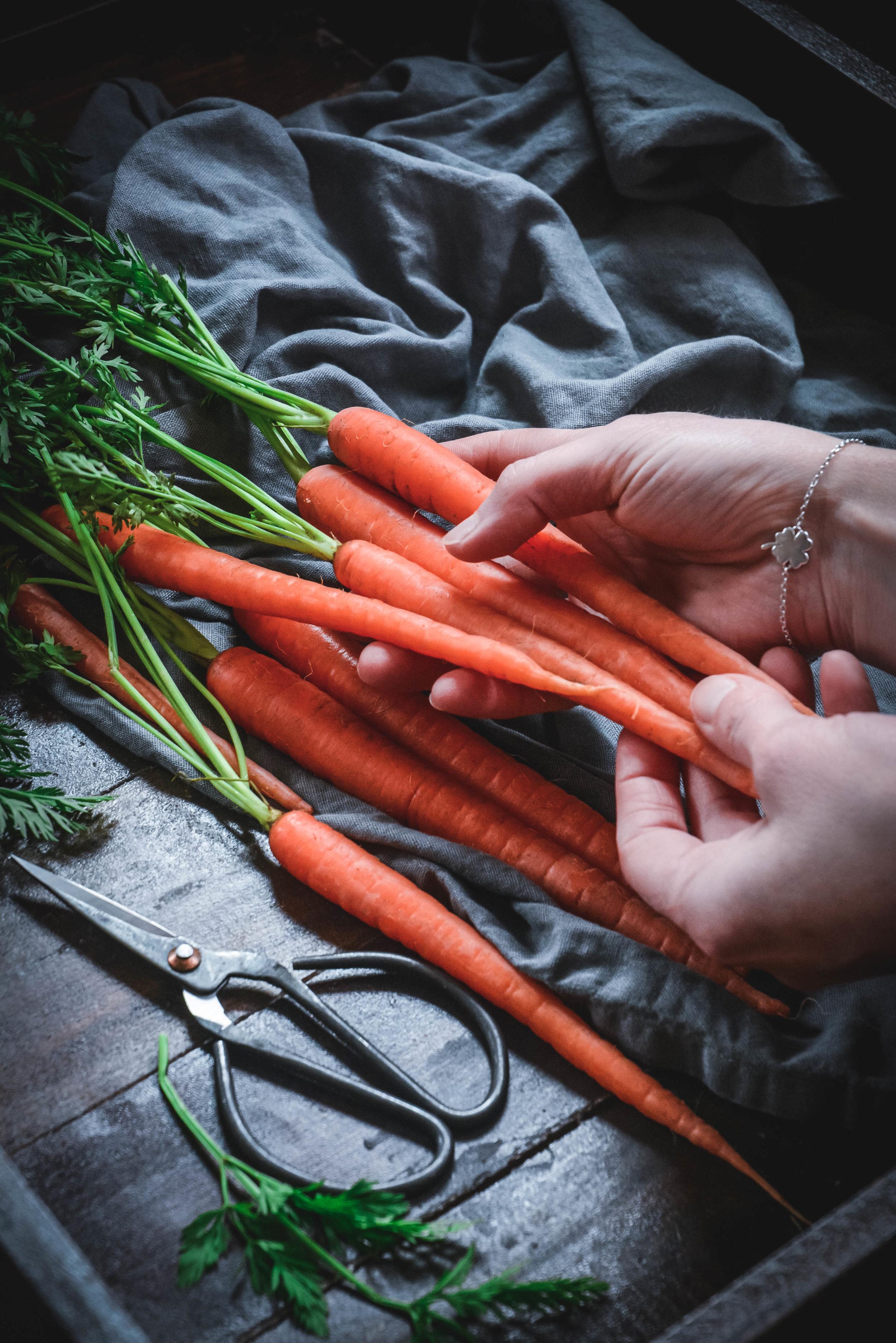 carrots hands.jpg