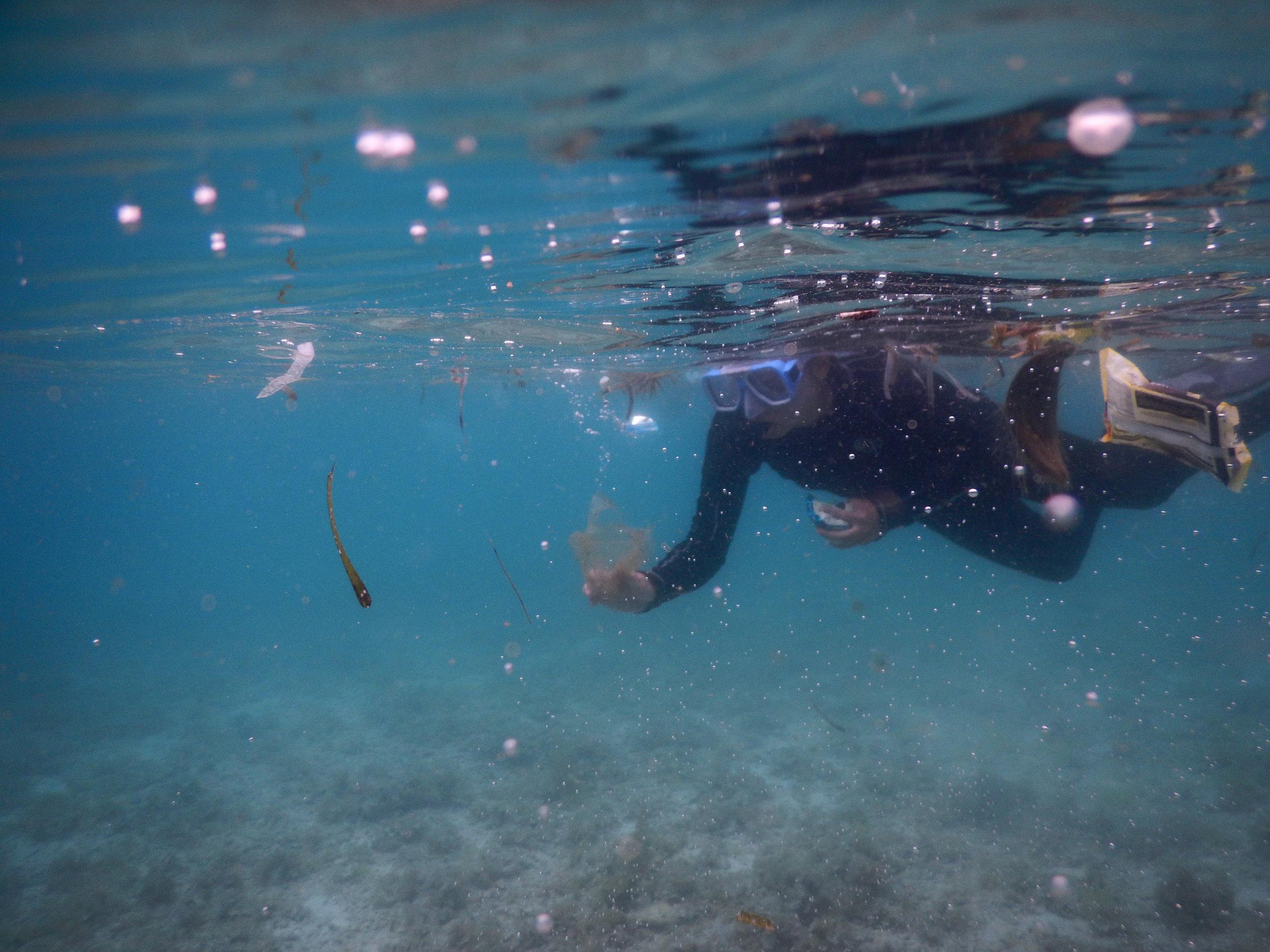 Underwater world cleanup