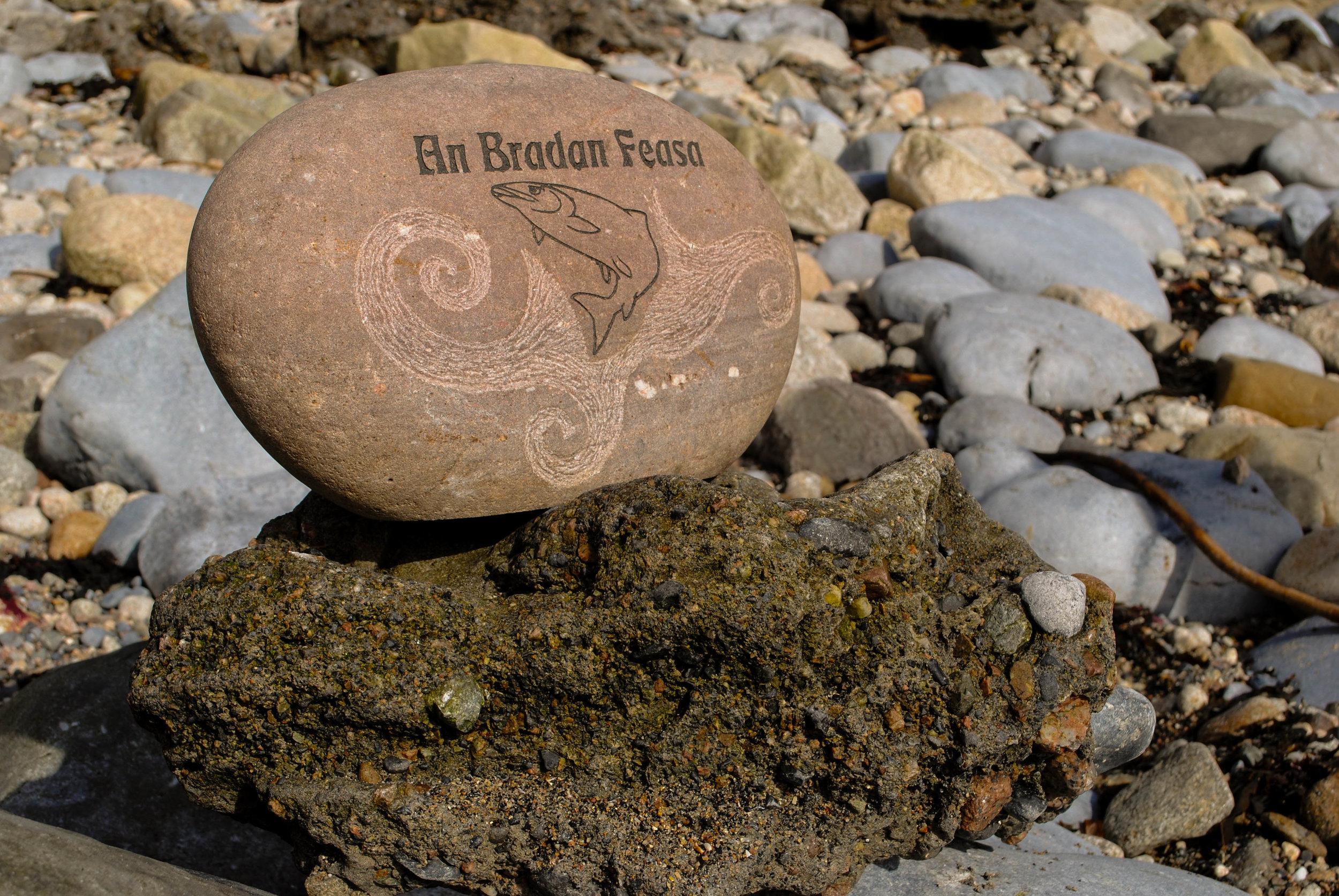 An Bradan Feasa (The Salmon of widsom)    FOR SALE